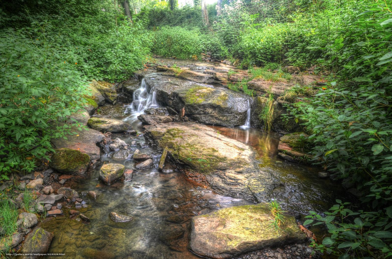 Скачать обои речка,  лес,  водопад,  природа бесплатно для рабочего стола в разрешении 4928x3264 — картинка №623329