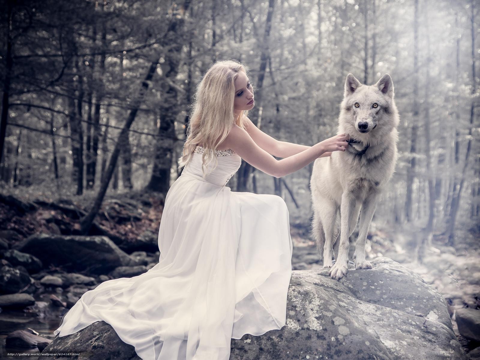Скачать обои девушка,  платье,  волк,  лес бесплатно для рабочего стола в разрешении 2048x1537 — картинка №624167