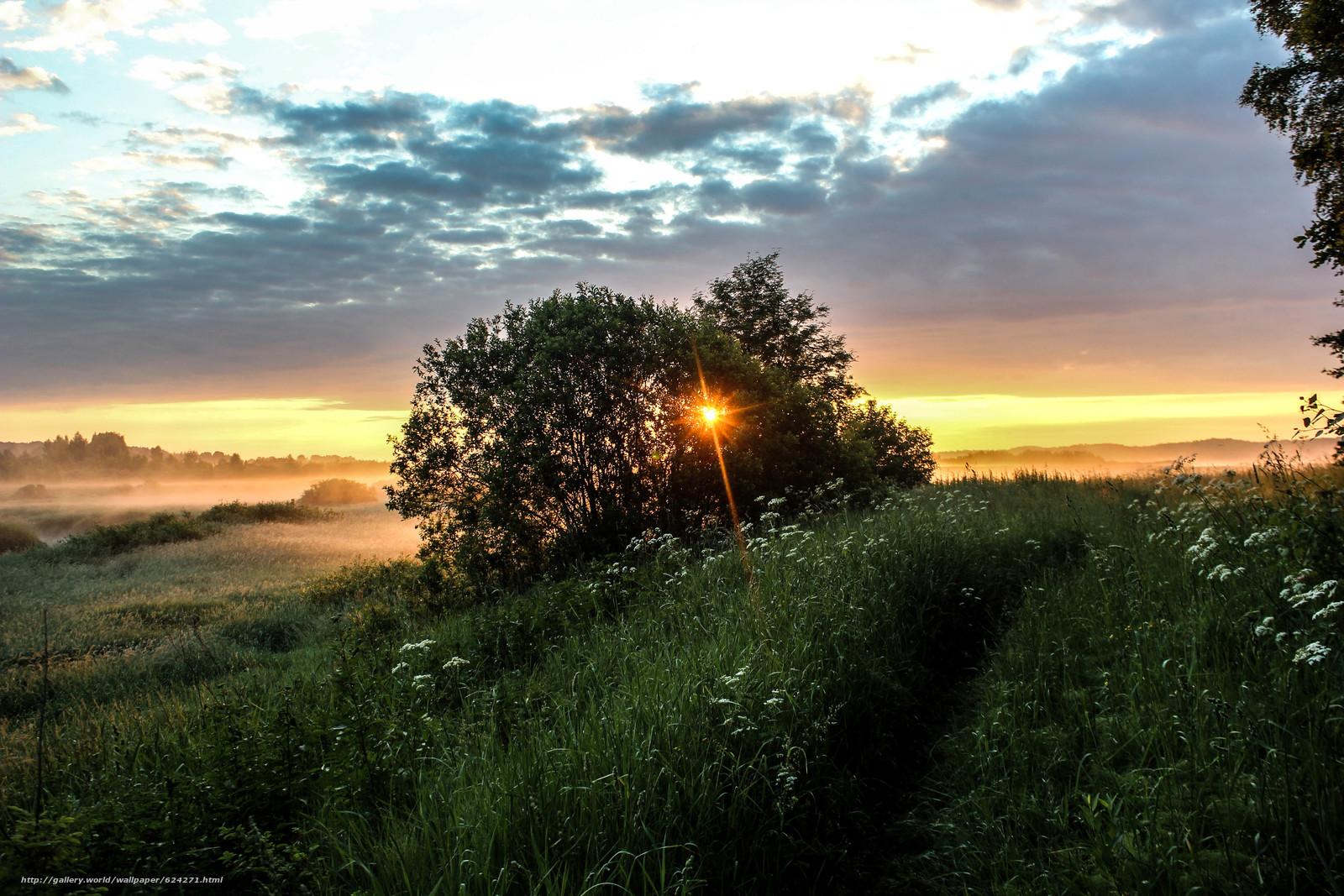 Download wallpaper morning,  sunrise,  summer,  Pushkin Hills free desktop wallpaper in the resolution 5184x3456 — picture №624271
