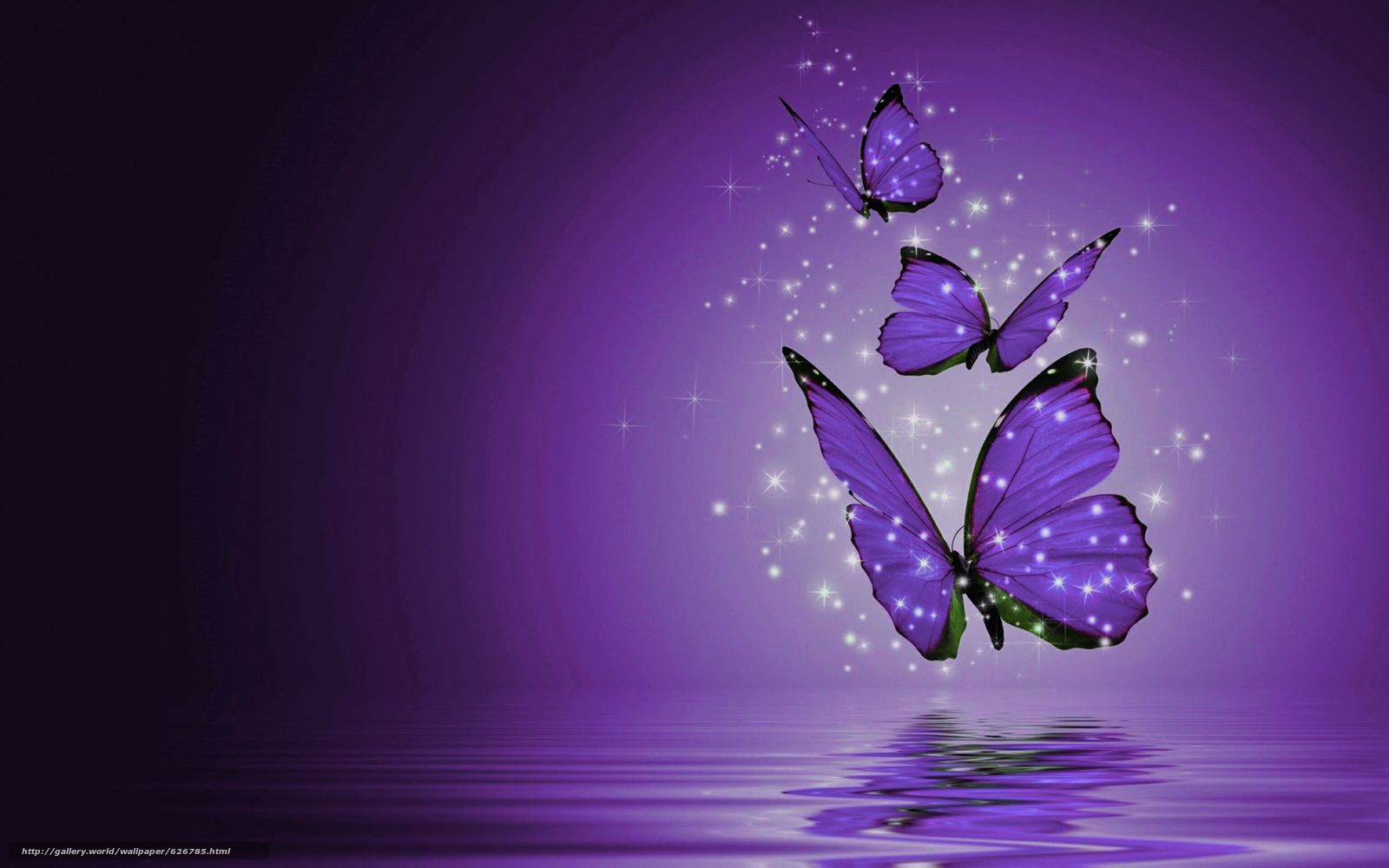 Tlcharger fond d 39 ecran papillons papillons 3d fonds d for Sfondi pc in 3d