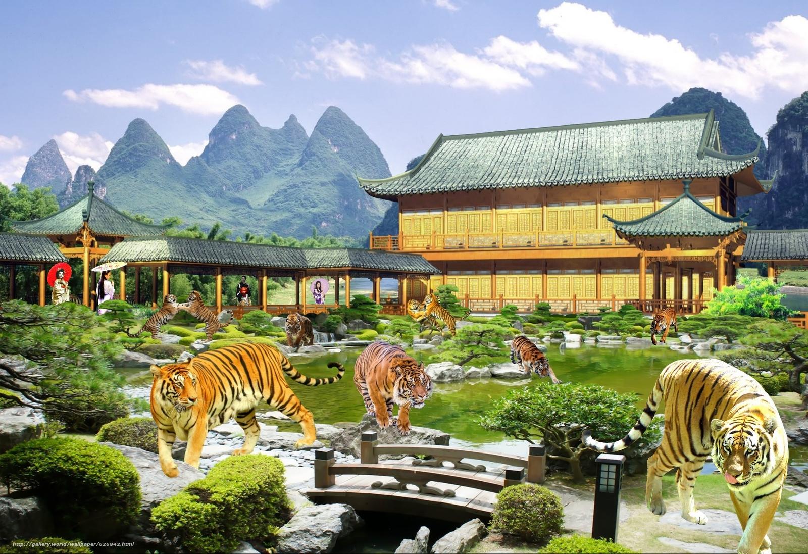 Скачать обои тигры,  азиатки,  сюрреализм бесплатно для рабочего стола в разрешении 2048x1404 — картинка №626842