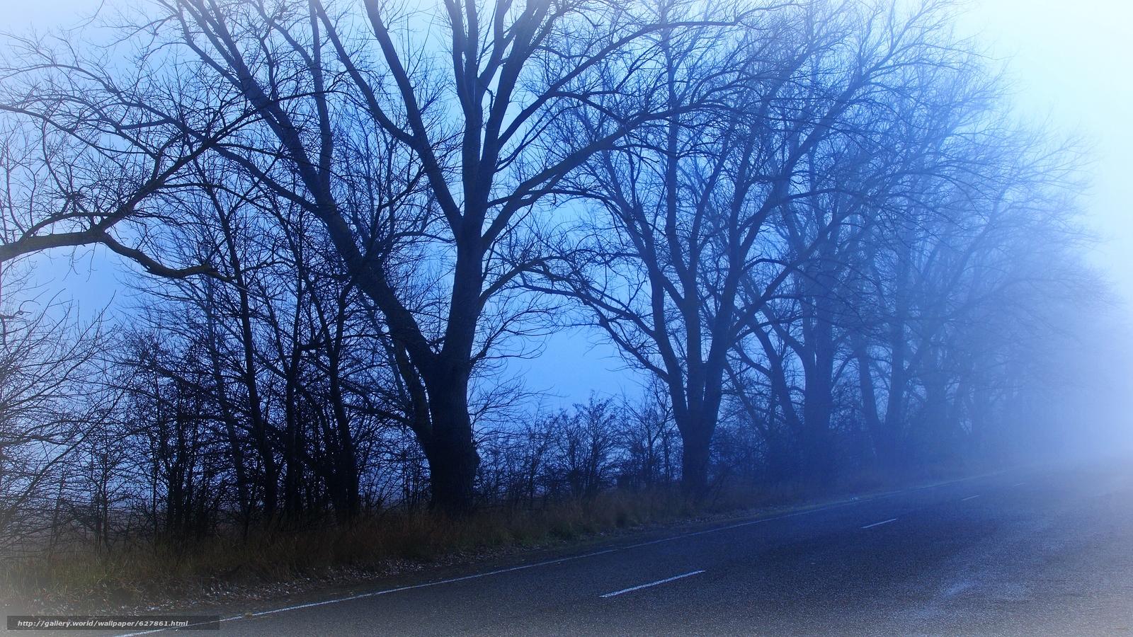 Tlcharger Fond d'ecran route,  DAWN,  brouillard,  arbres Fonds d'ecran gratuits pour votre rsolution du bureau 6000x3376 — image №627861