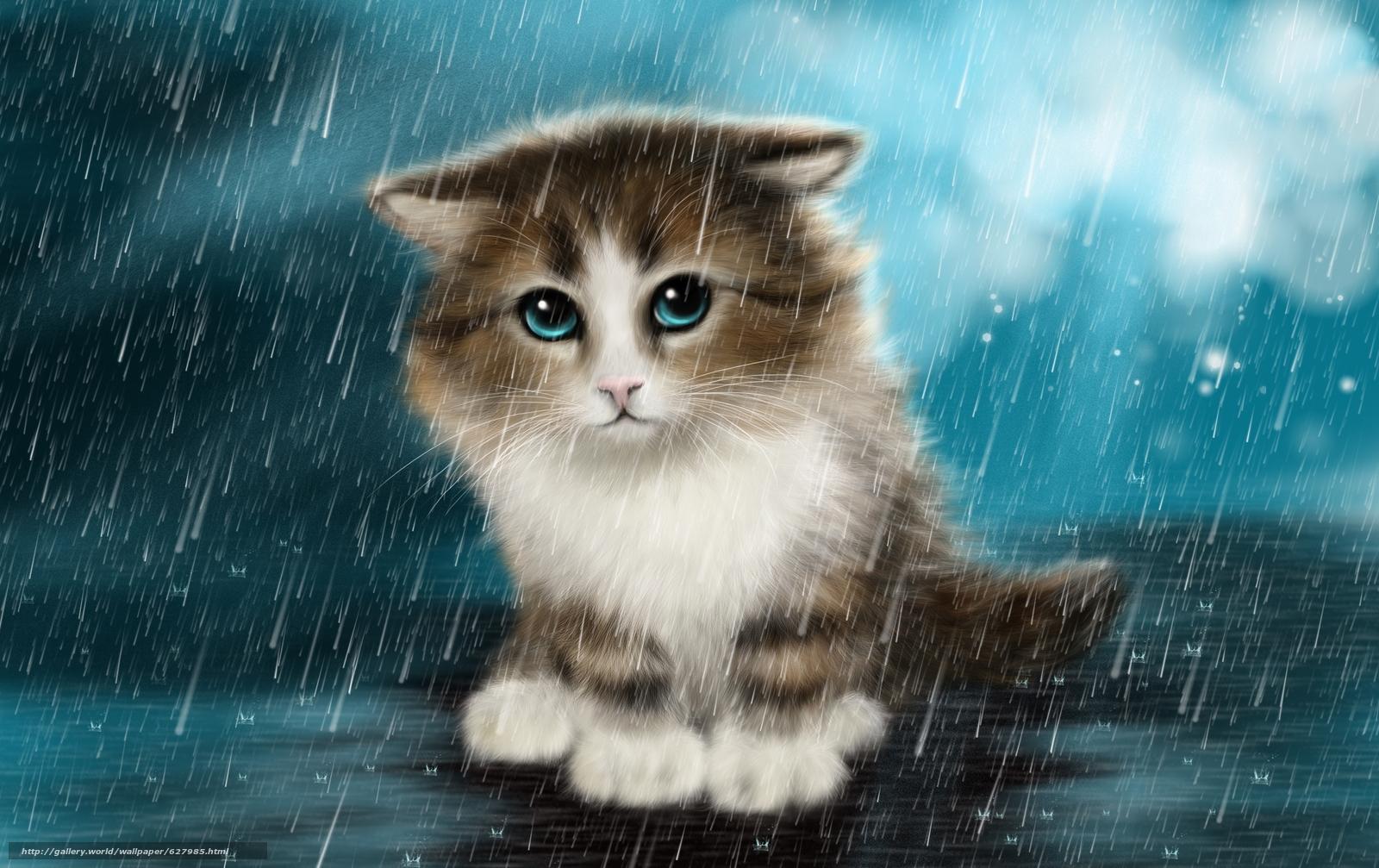 scaricare gli sfondi gattino,  Sotto la pioggia,  arte Sfondi gratis per la risoluzione del desktop 3032x1908 — immagine №627985