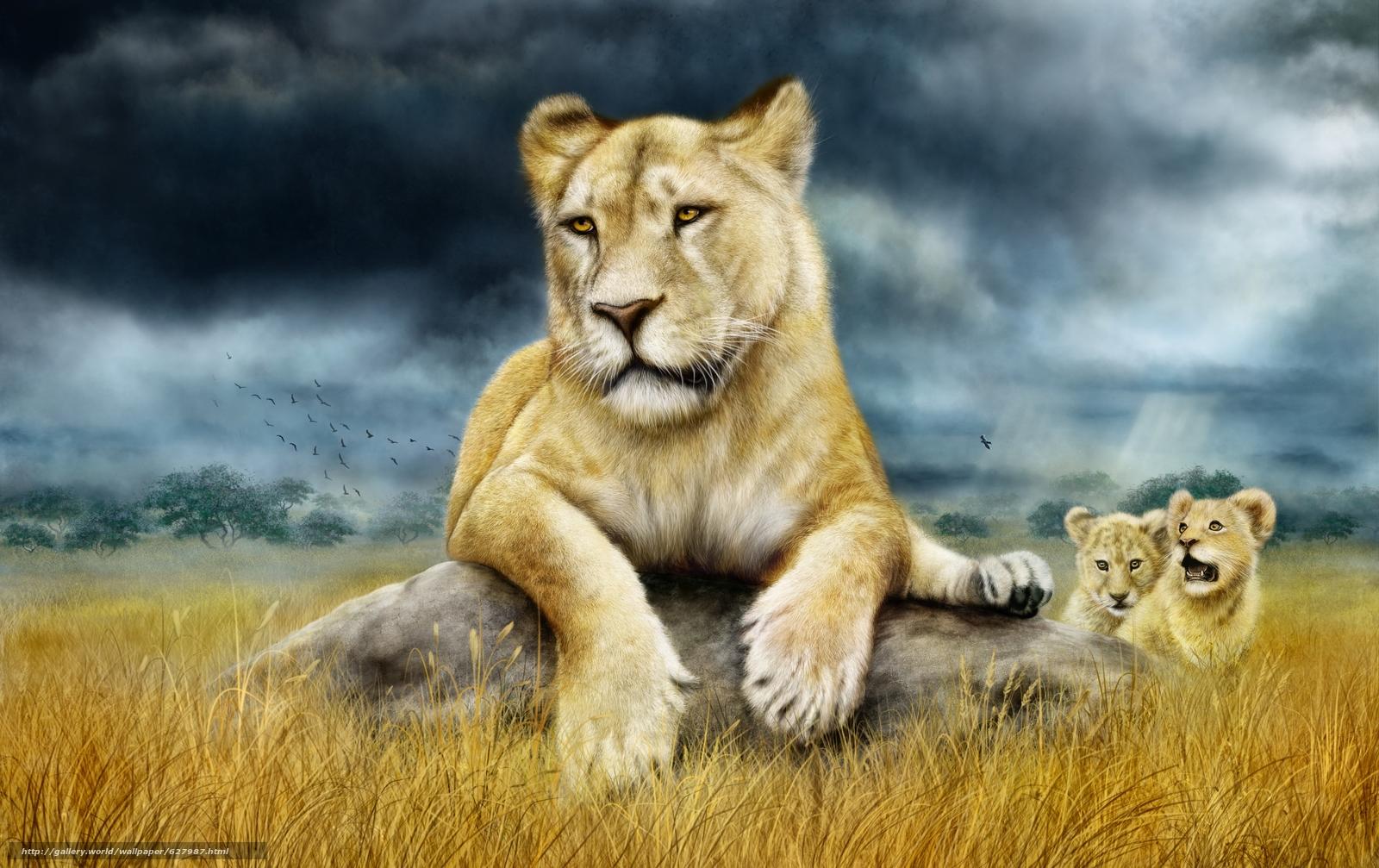 scaricare gli sfondi leonessa,  Cubs,  arte Sfondi gratis per la risoluzione del desktop 3032x1908 — immagine №627987