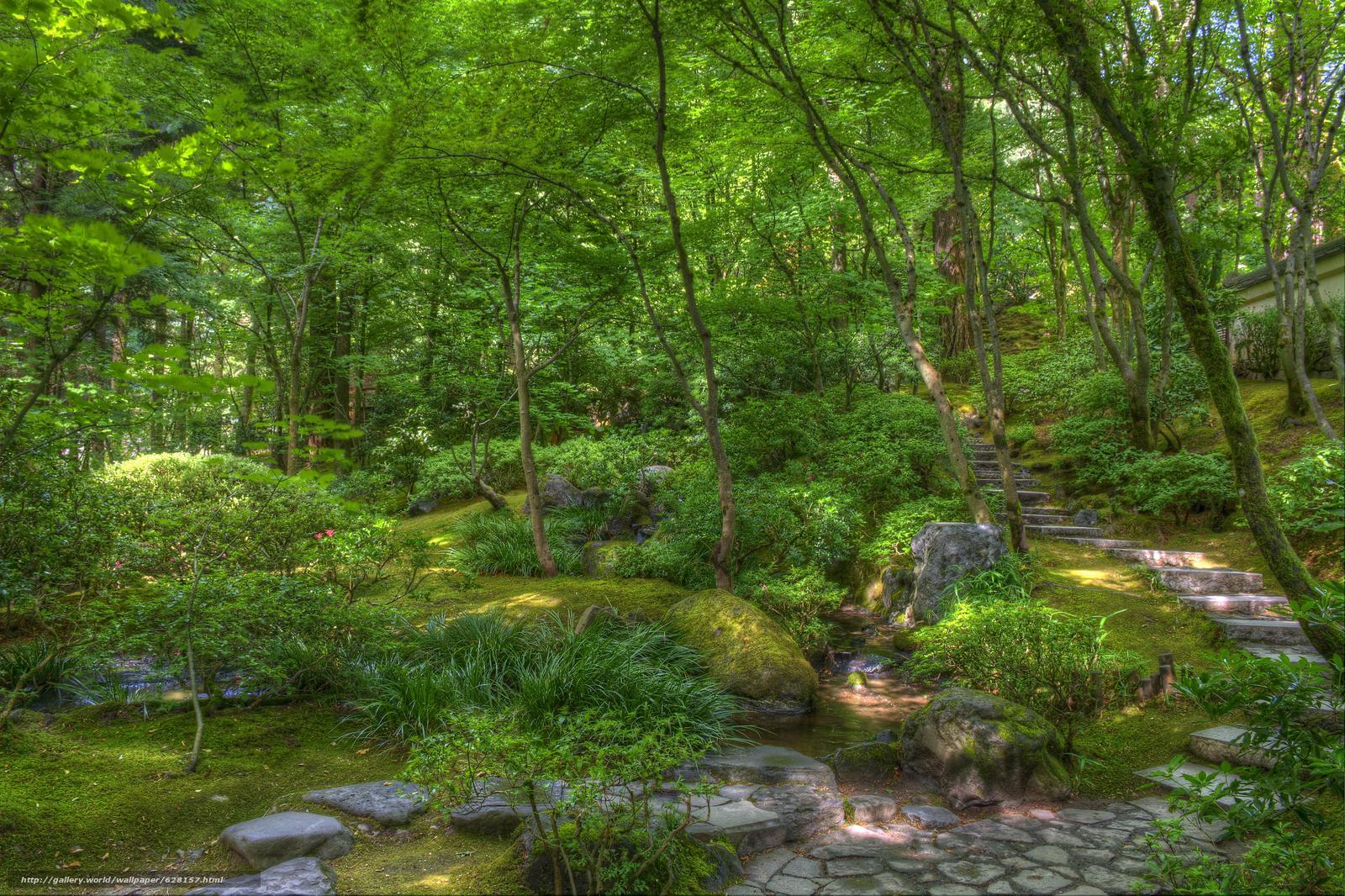 Скачать обои japanese garden,  сад,  парк,  деревья бесплатно для рабочего стола в разрешении 6036x4020 — картинка №628157