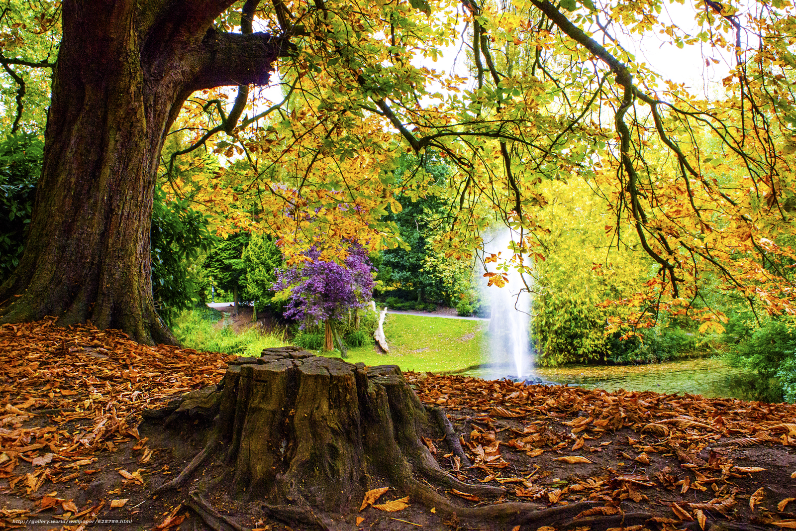 Download wallpaper autumn,  park,  pond,  FOUNTAIN free desktop wallpaper in the resolution 5184x3456 — picture №628759