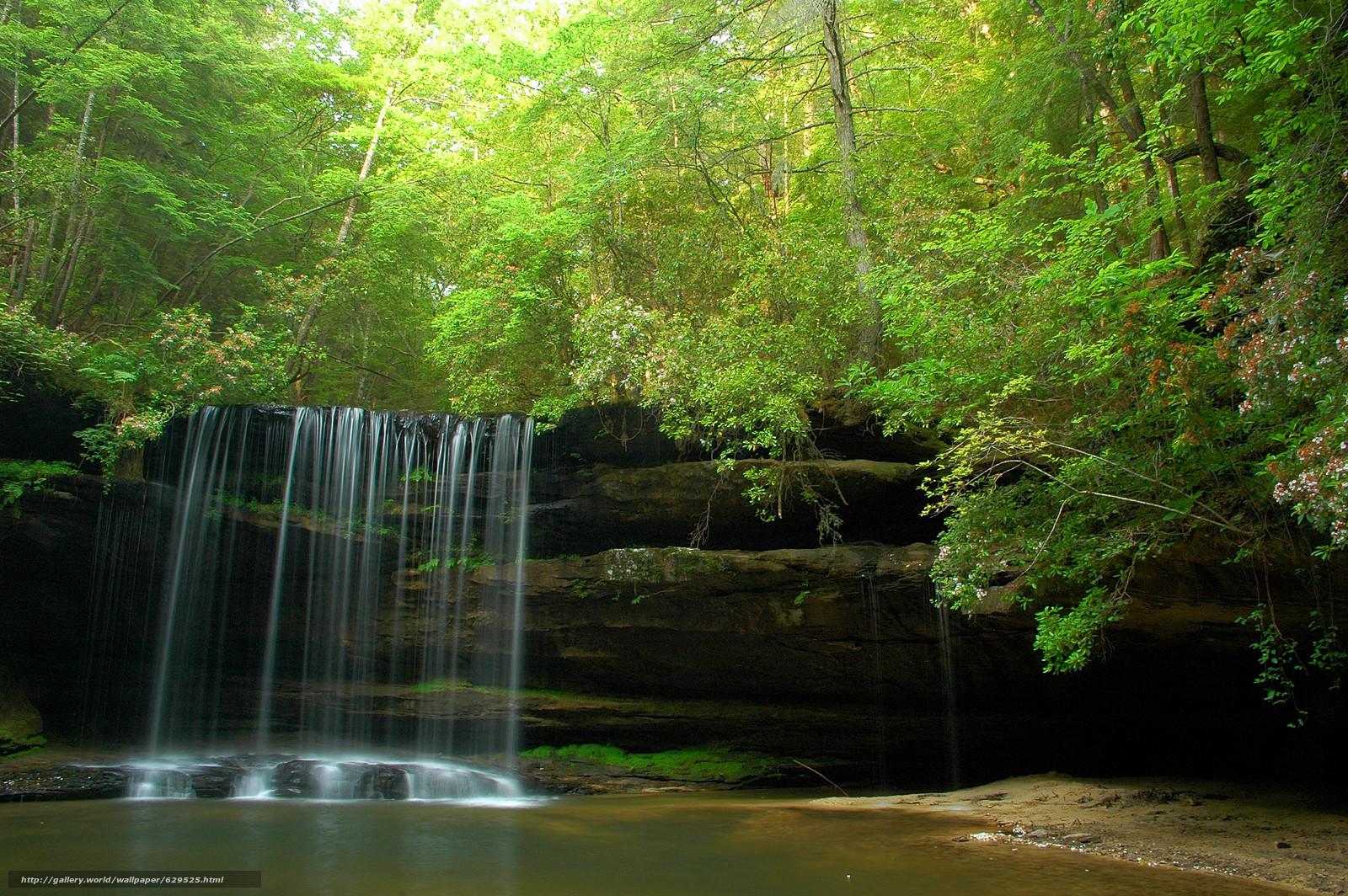 scaricare gli sfondi foresta,  alberi,  Rocce,  cascata Sfondi gratis per la risoluzione del desktop 3008x2000 — immagine №629525