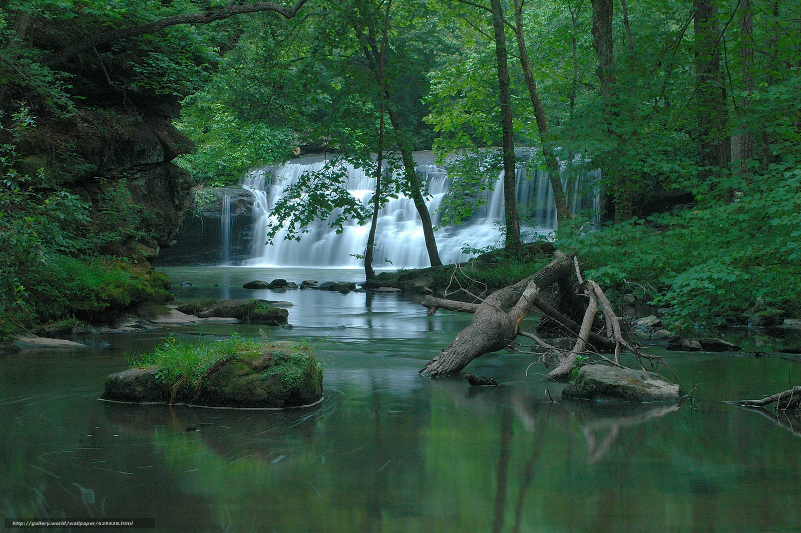 scaricare gli sfondi foresta,  fiume,  cascata,  alberi Sfondi gratis per la risoluzione del desktop 3008x2000 — immagine №629538
