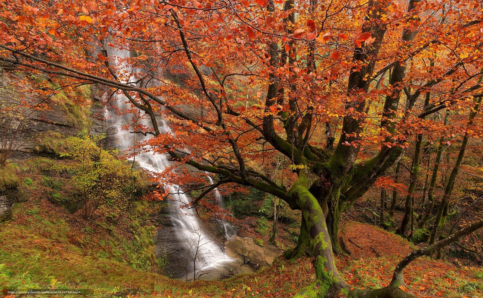下载壁纸 Uguna瀑布,  Gorbea自然公园,  比斯开,  巴斯克 免费为您的桌面分辨率的壁纸 2048x1265 — 图片 №630703