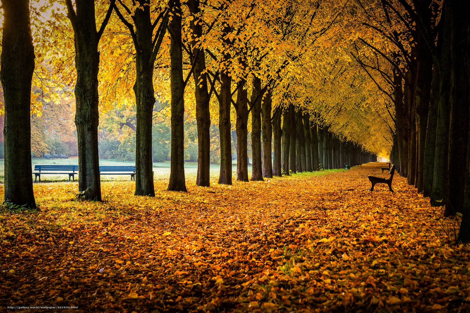 Скачать обои Georgengarten,  Herrenhausen Gardens,  Hanover,  Lower Saxony бесплатно для рабочего стола в разрешении 2048x1365 — картинка №631936