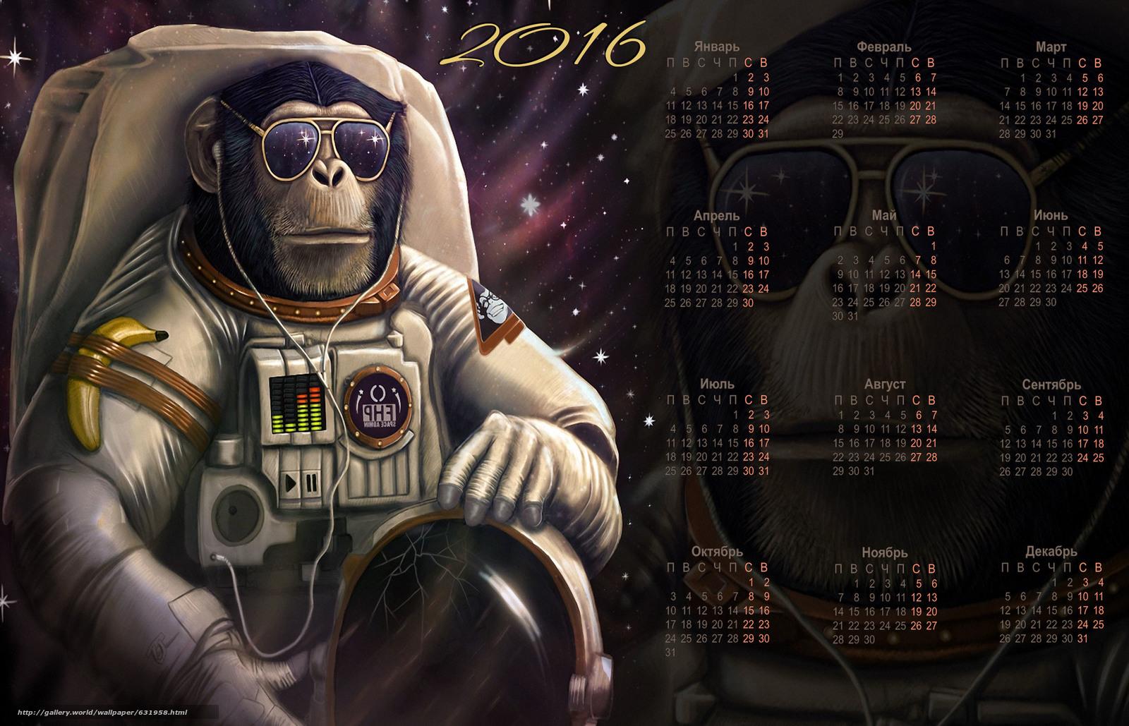 scaricare gli sfondi Calendario per il 2016. L'origine del genere umano,  scimmia,  Simbolo Scimmia 2016,  Calendario 2016 Sfondi gratis per la risoluzione del desktop 3307x2126 — immagine №631958