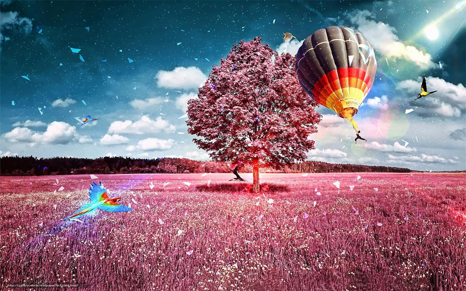 Descargar gratis campo,  árbol,  globo,  loro Fondos de escritorio en la resolucin 1920x1200 — imagen №632069