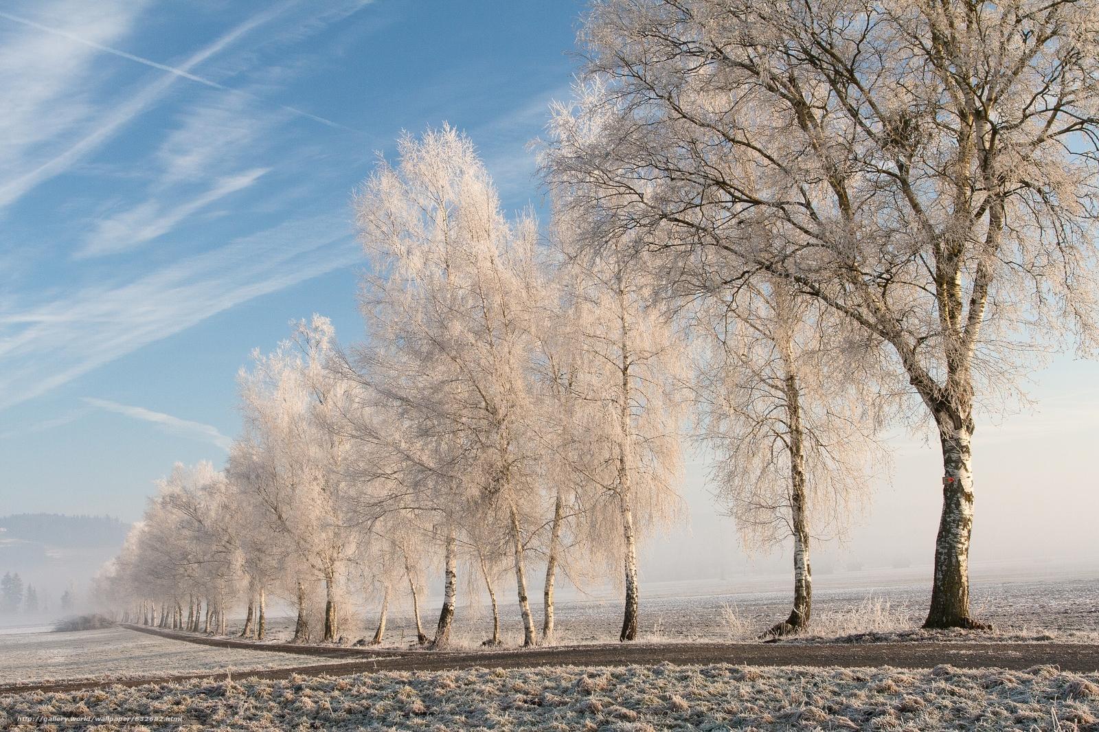 Download wallpaper field,  road,  trees,  frost free desktop wallpaper in the resolution 2000x1332 — picture №632682