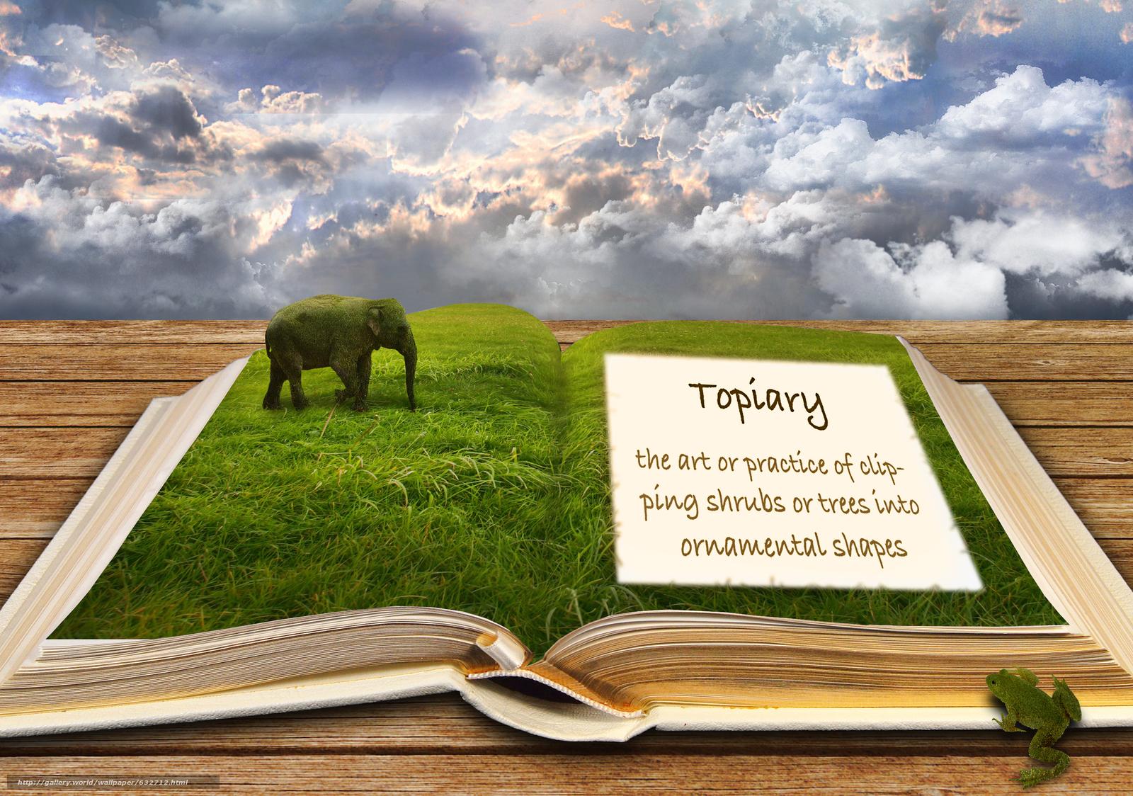 Скачать обои книга,  небо,  слон,  лягушка бесплатно для рабочего стола в разрешении 3000x2108 — картинка №632712