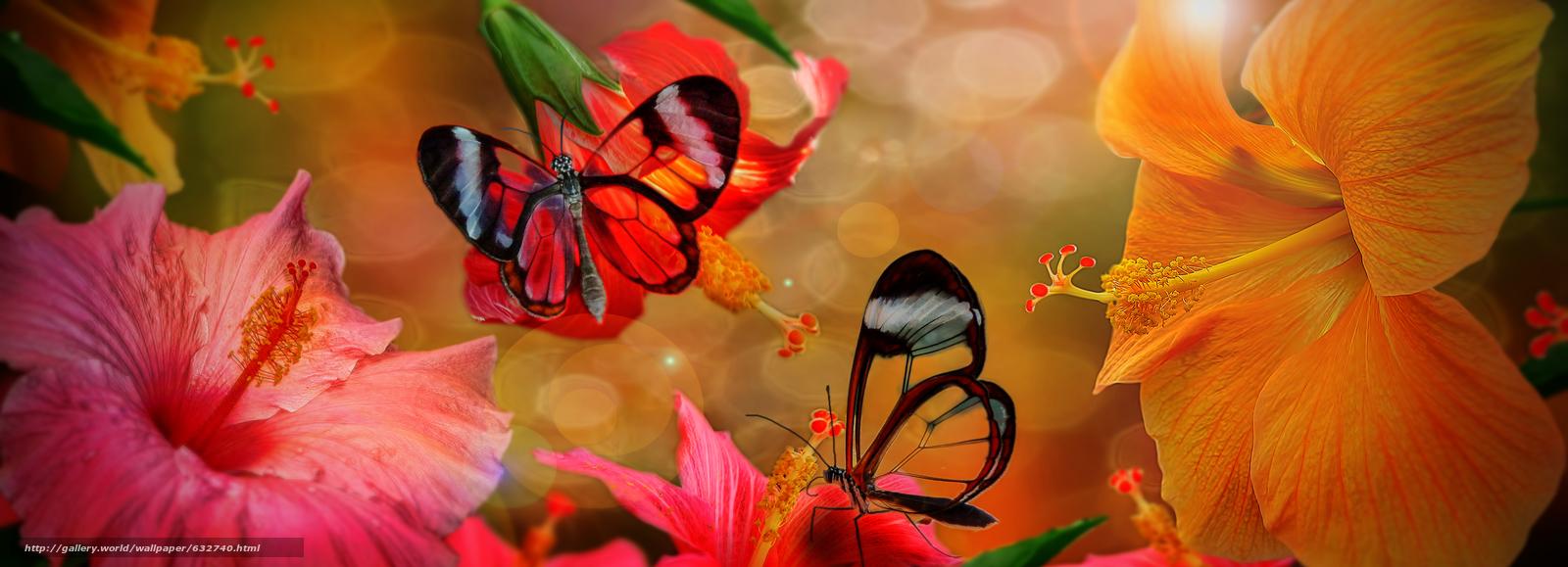 Скачать обои гибискус,  бабочки,  фотошоп бесплатно для рабочего стола в разрешении 9185x3324 — картинка №632740