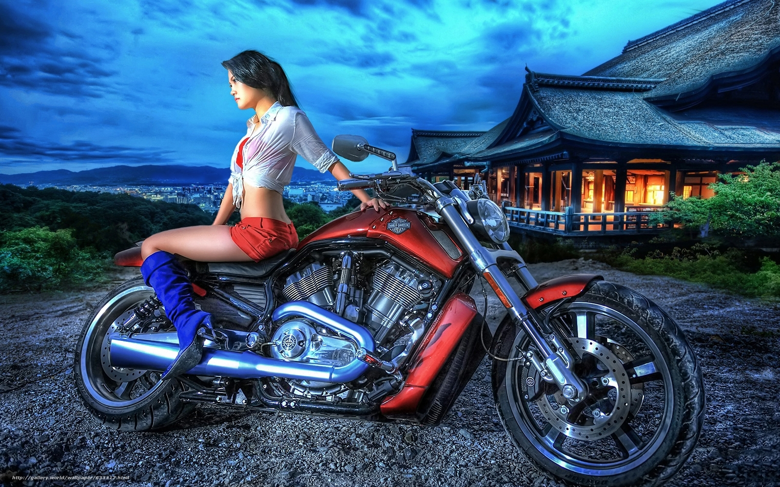 Download wallpaper harley davidson,  girl,  On the Sunset free desktop wallpaper in the resolution 1600x1000 — picture №633317
