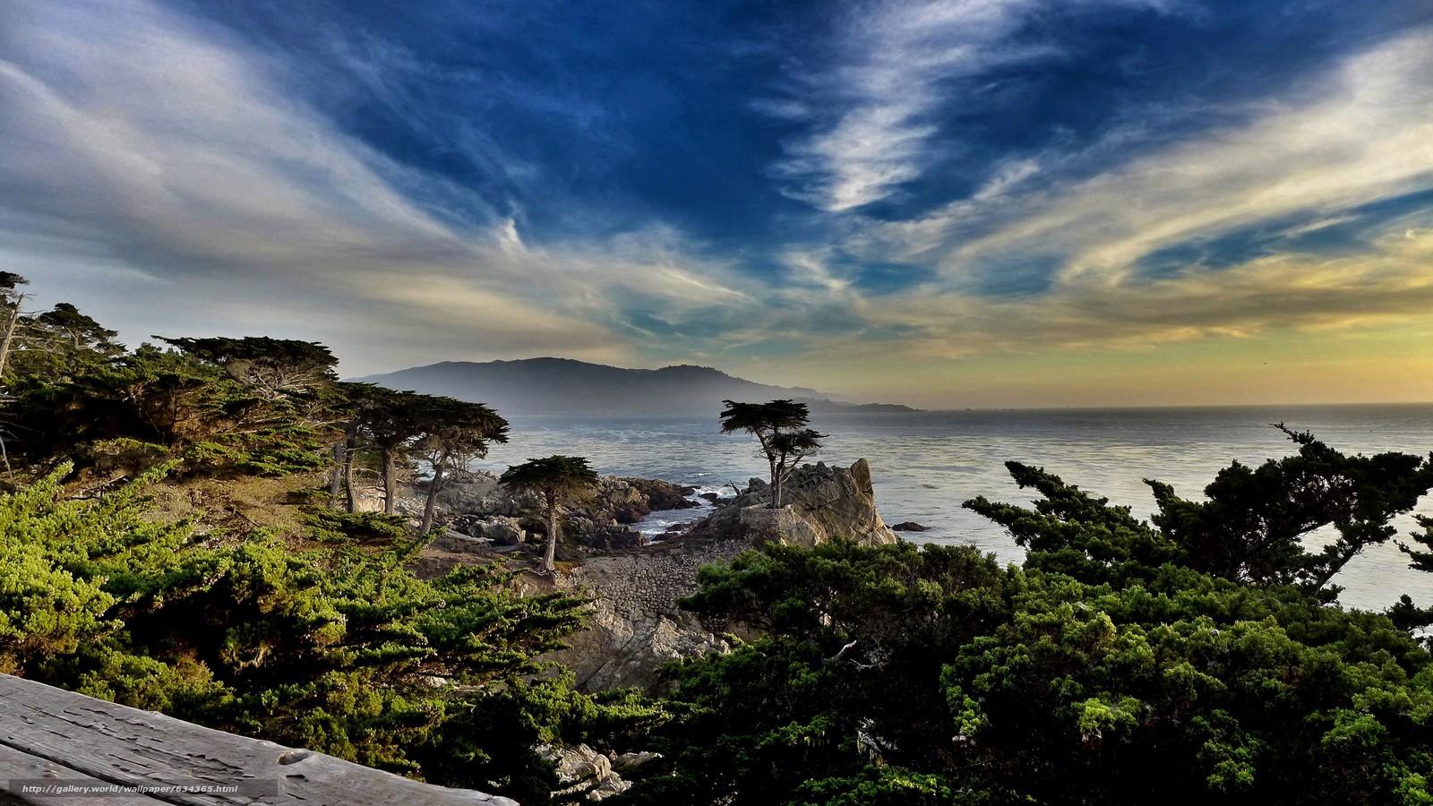Скачать обои Lone Cypress,  Pebble Beach,  California,  море бесплатно для рабочего стола в разрешении 3968x2232 — картинка №634365