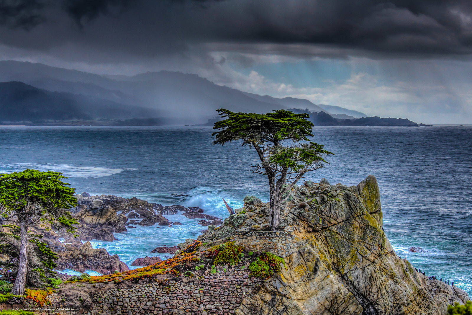 Descargar gratis Lone Cypress,  Pebble Beach,  California,  mar Fondos de escritorio en la resolucin 5044x3363 — imagen №634366