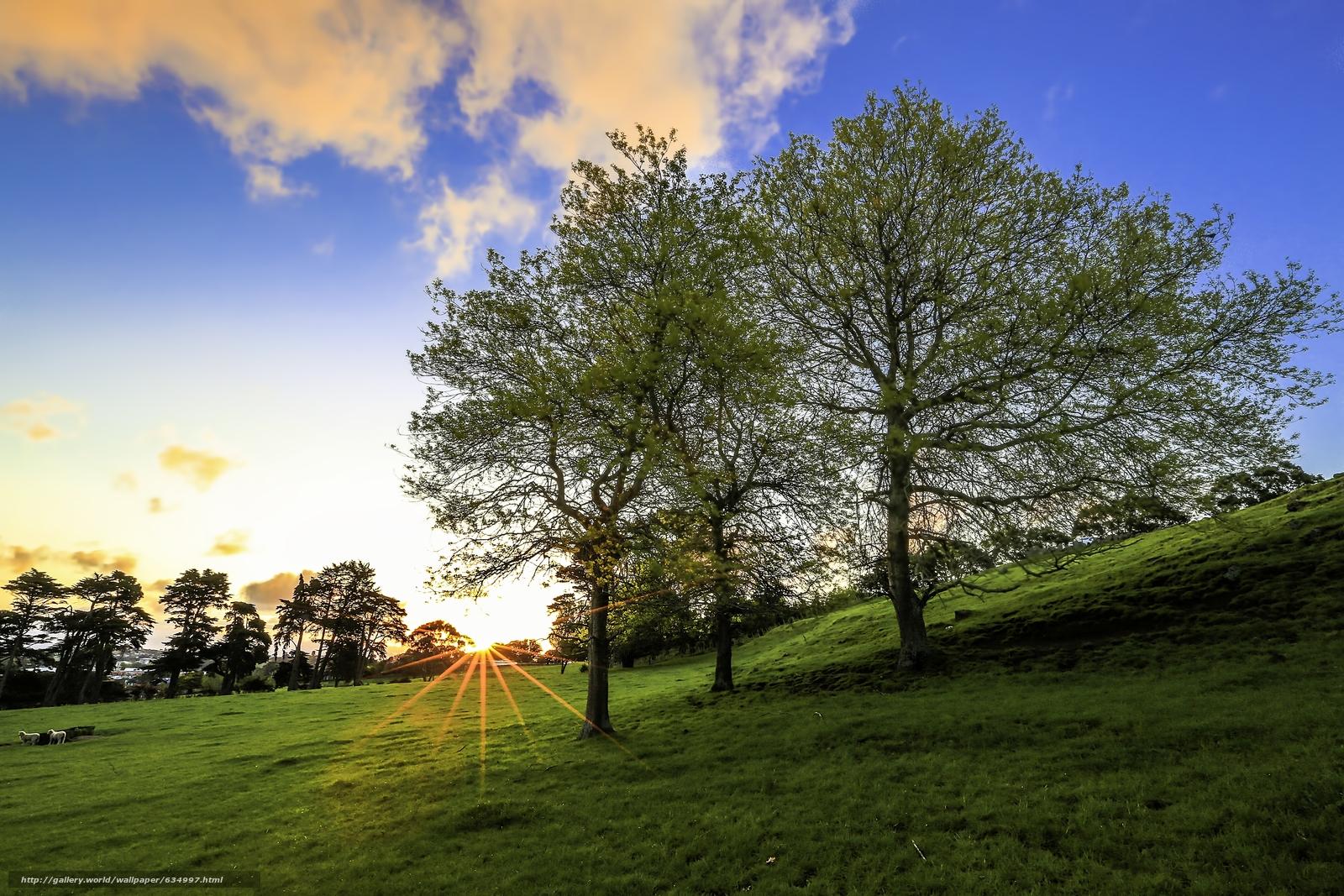 Tlcharger Fond d'ecran domaine,  Hills,  arbres,  paysage Fonds d'ecran gratuits pour votre rsolution du bureau 5760x3840 — image №634997