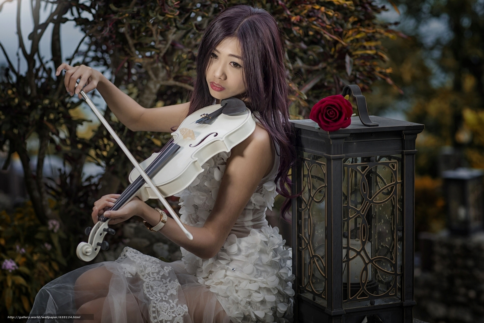 Download wallpaper girl,  Asian,  violin,  lantern free desktop wallpaper in the resolution 1920x1280 — picture №635124