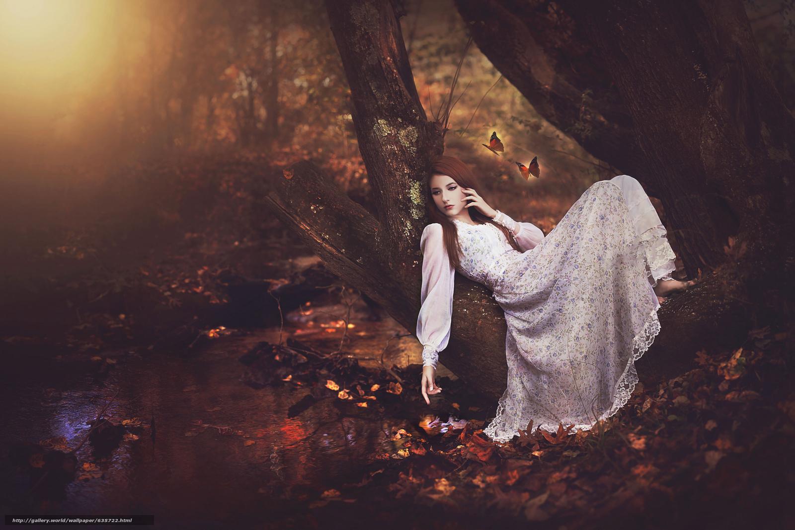 scaricare gli sfondi ragazza,  vestire,  foresta,  albero Sfondi gratis per la risoluzione del desktop 2048x1365 — immagine №635722