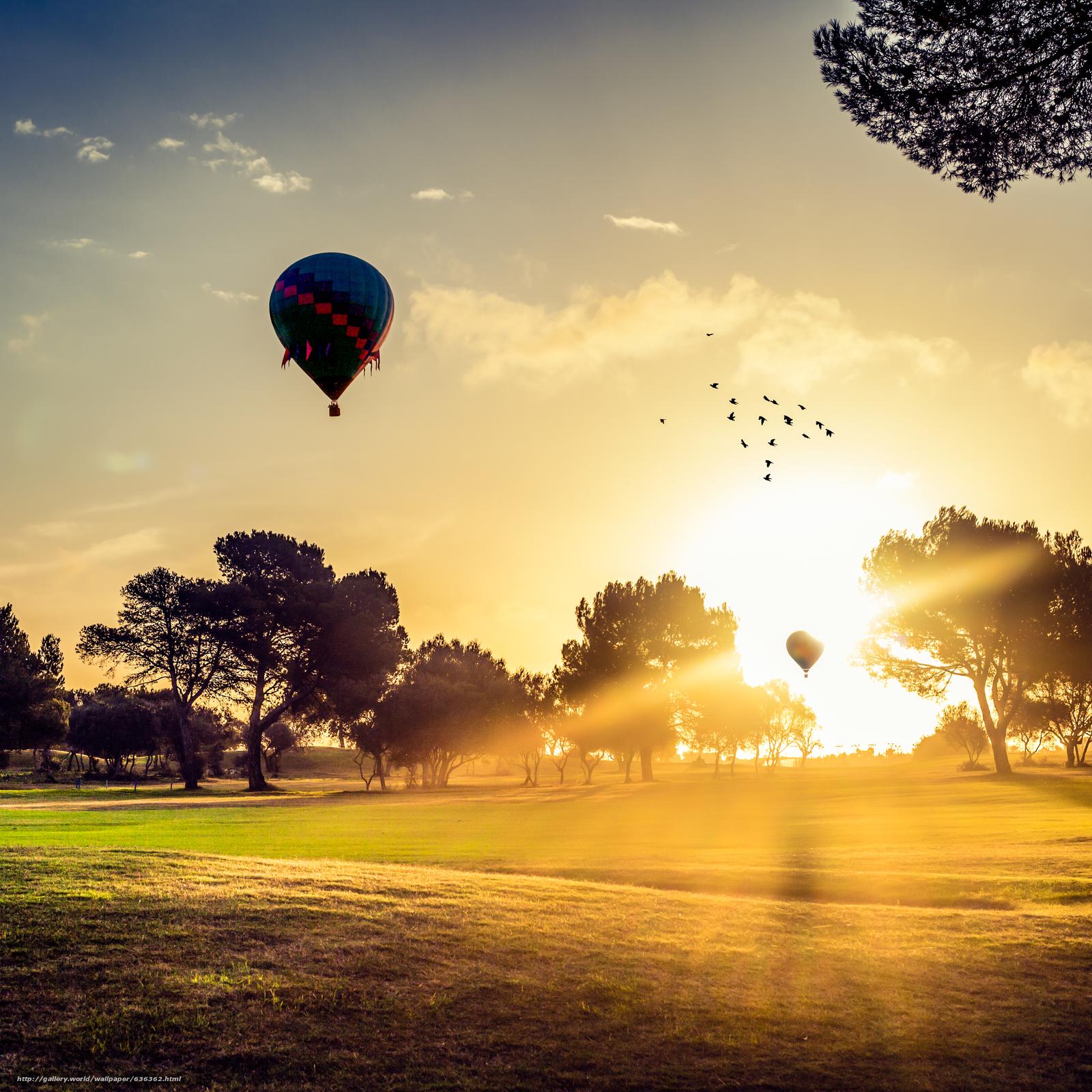 Скачать обои рассвет,  поле,  деревья,  воздушный шар бесплатно для рабочего стола в разрешении 3744x3744 — картинка №636362