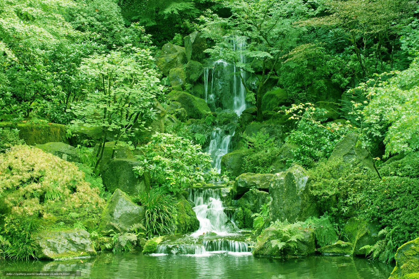 Скачать обои Japanese Garden,  Washington Park,  Portland,  Oregon бесплатно для рабочего стола в разрешении 2048x1365 — картинка №636626