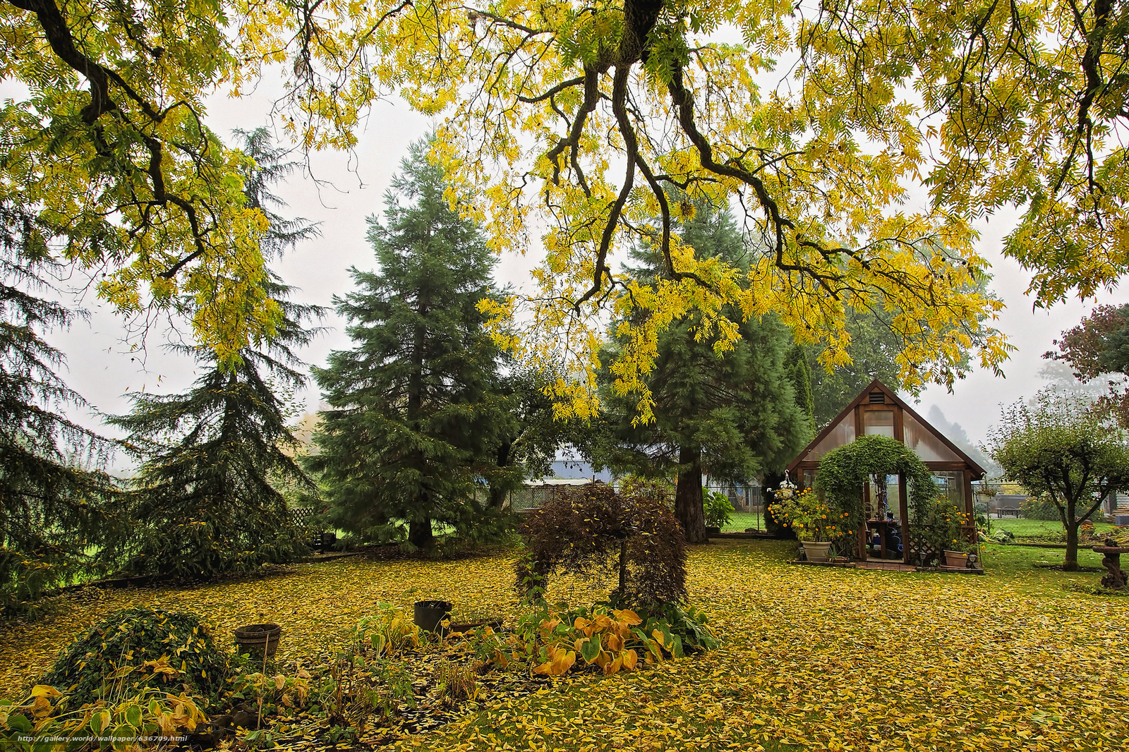 Скачать обои осень,  сад,  днревья,  домик бесплатно для рабочего стола в разрешении 2048x1365 — картинка №636709