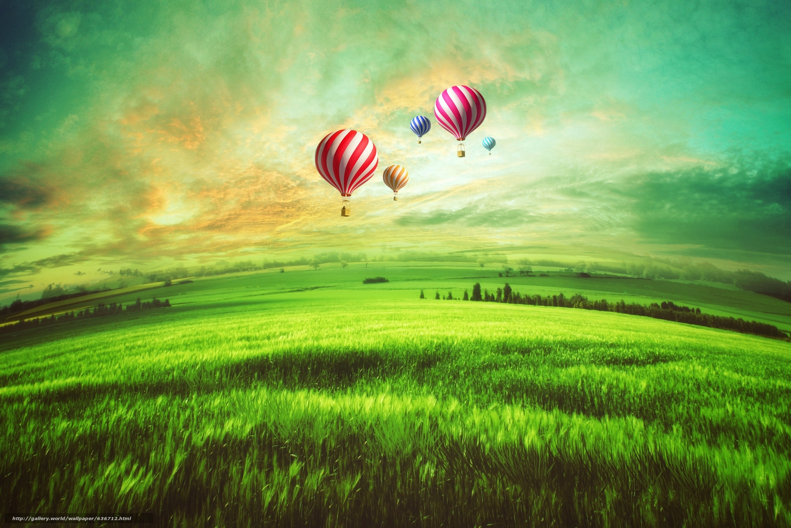 Скачать обои закат,  поле,  воздушные шары бесплатно для рабочего стола в разрешении 3072x2048 — картинка №636712
