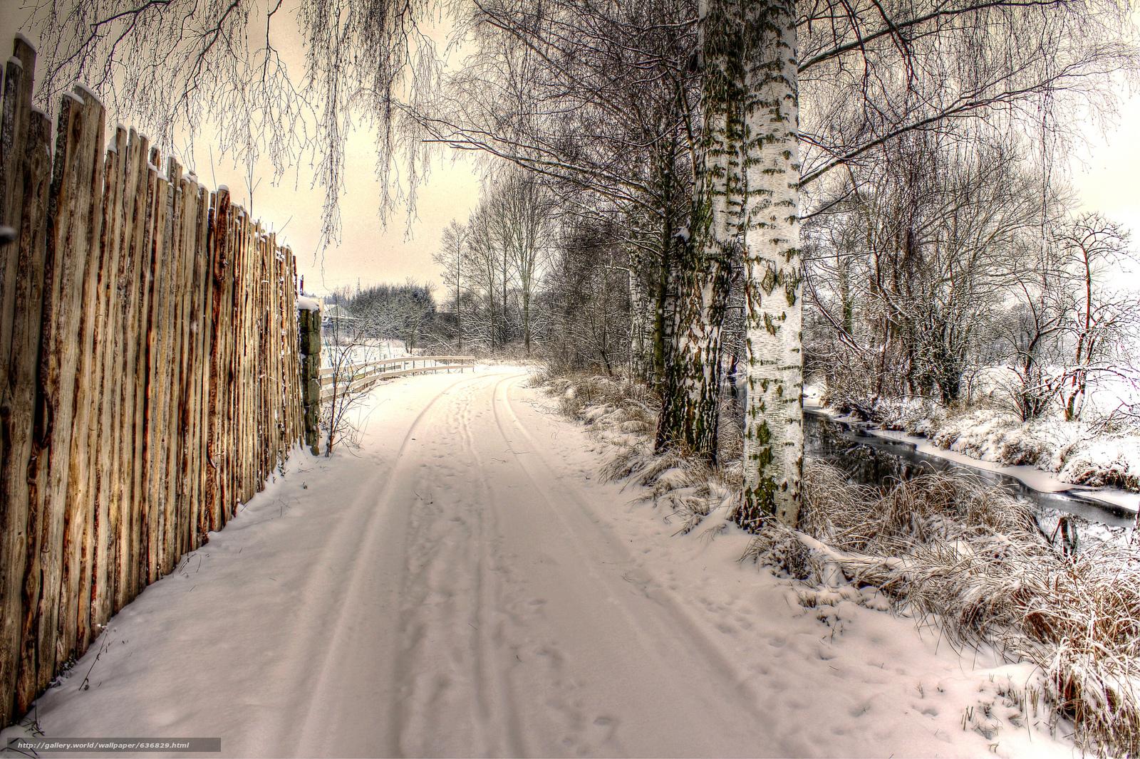 Скачать обои зима,  дорога,  забор,  деревья бесплатно для рабочего стола в разрешении 2048x1365 — картинка №636829