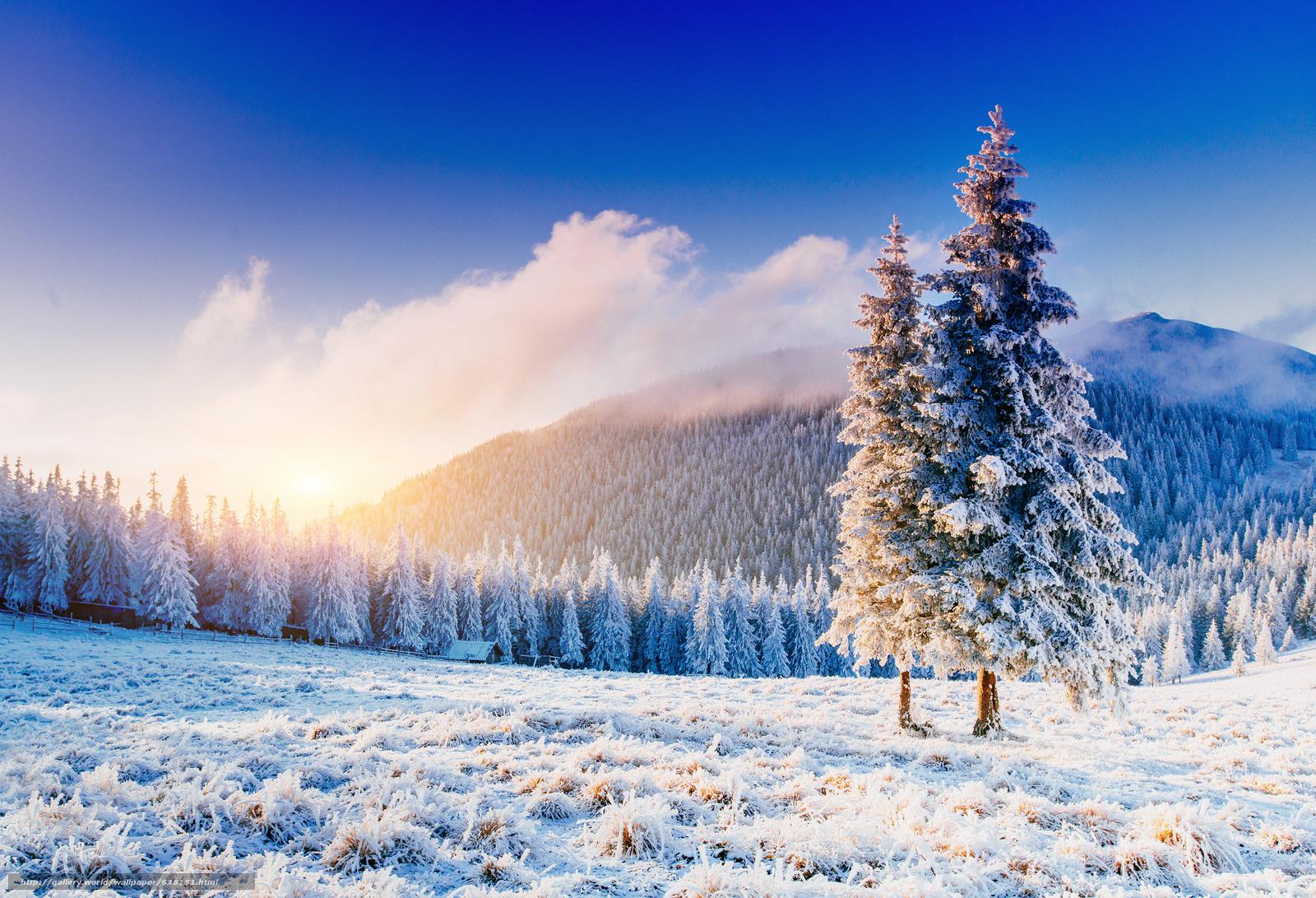Descargar gratis puesta del sol,  Montañas,  bosque,  árboles Fondos de escritorio en la resolucin 2048x1397 — imagen №638151