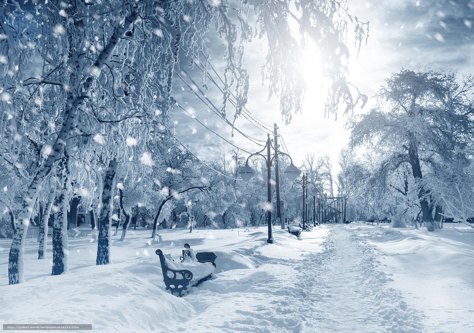 Descargar gratis invierno,  parque,  árboles,  tiendas Fondos de escritorio en la resolucin 2048x1441 — imagen №638153