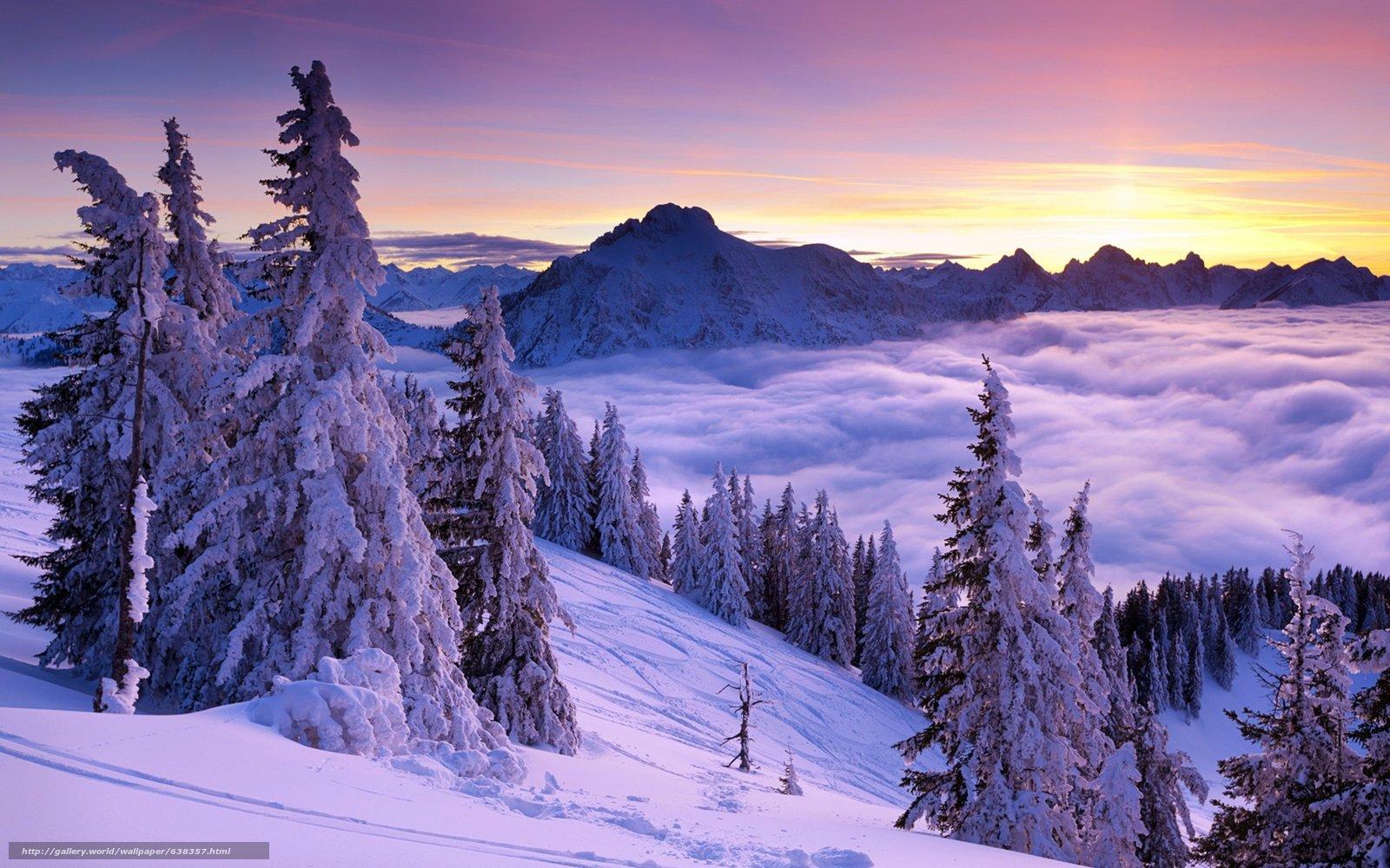 Скачать обои закат,  горы,  деревья,  зима бесплатно для рабочего стола в разрешении 4000x2500 — картинка №638357