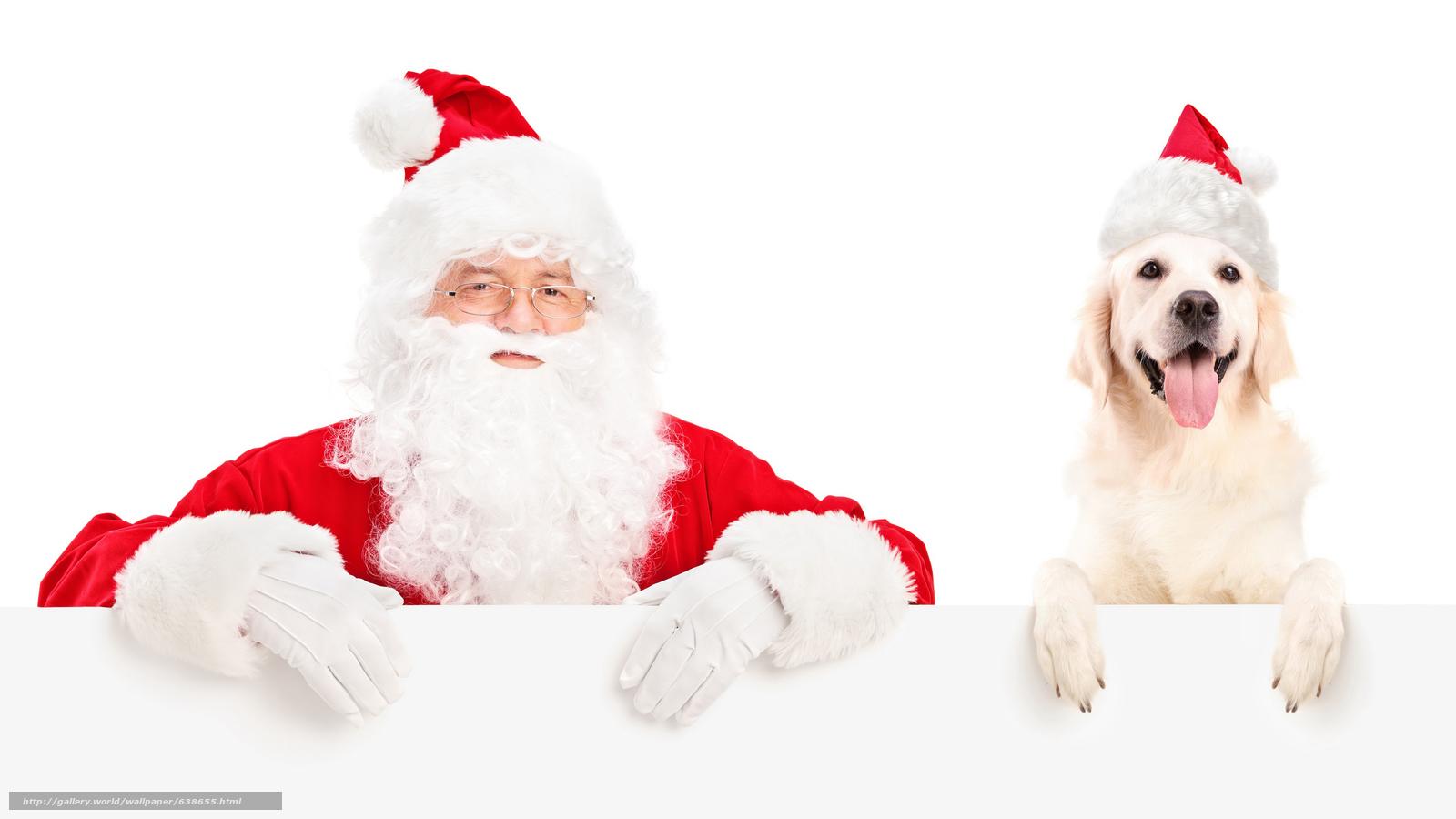 下载壁纸 圣诞老人,  圣诞老人,  狗,  新年 免费为您的桌面分辨率的壁纸 5500x3094 — 图片 №638655