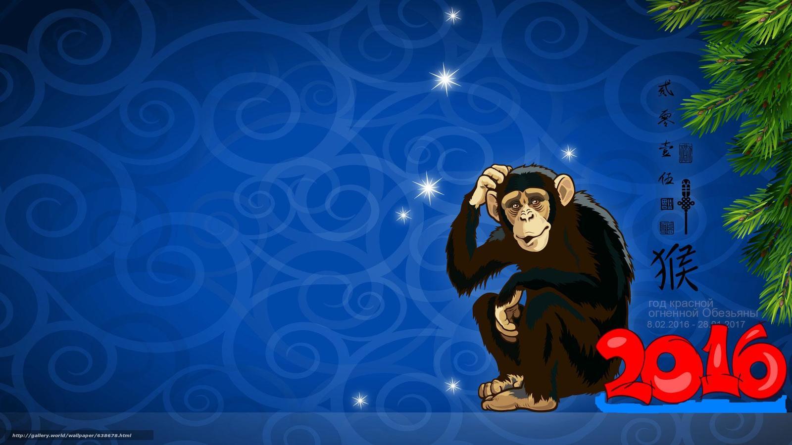 tlcharger fond d 39 ecran ann e red monkey singe 2016 papier peint avec un singe fonds d 39 ecran. Black Bedroom Furniture Sets. Home Design Ideas