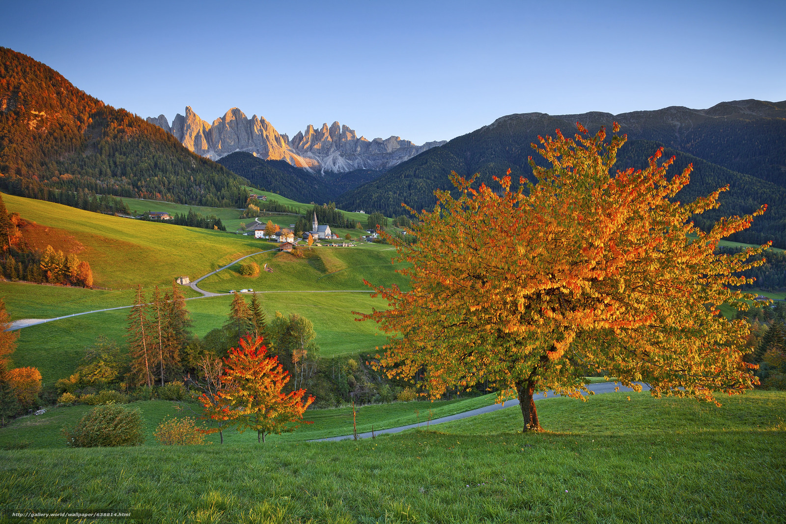 fall wallpaper italy - photo #2