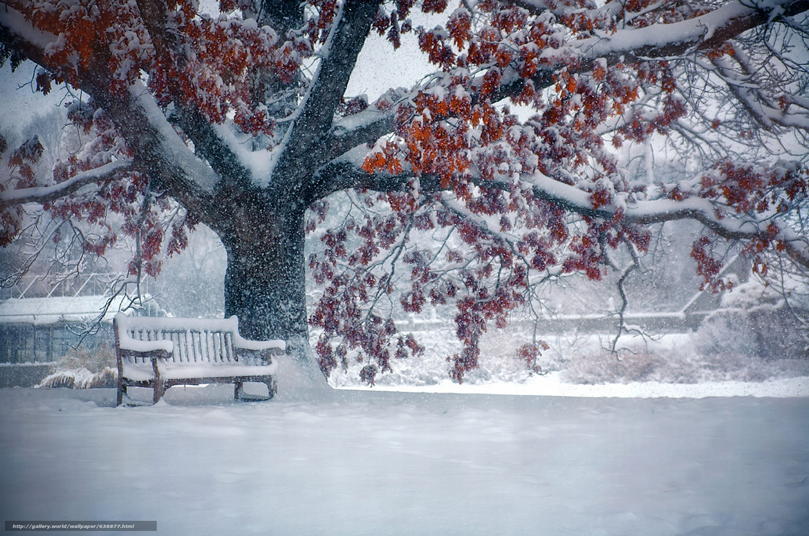 Download wallpaper winter,  snow,  tree,  bench free desktop wallpaper in the resolution 2048x1358 — picture №638877