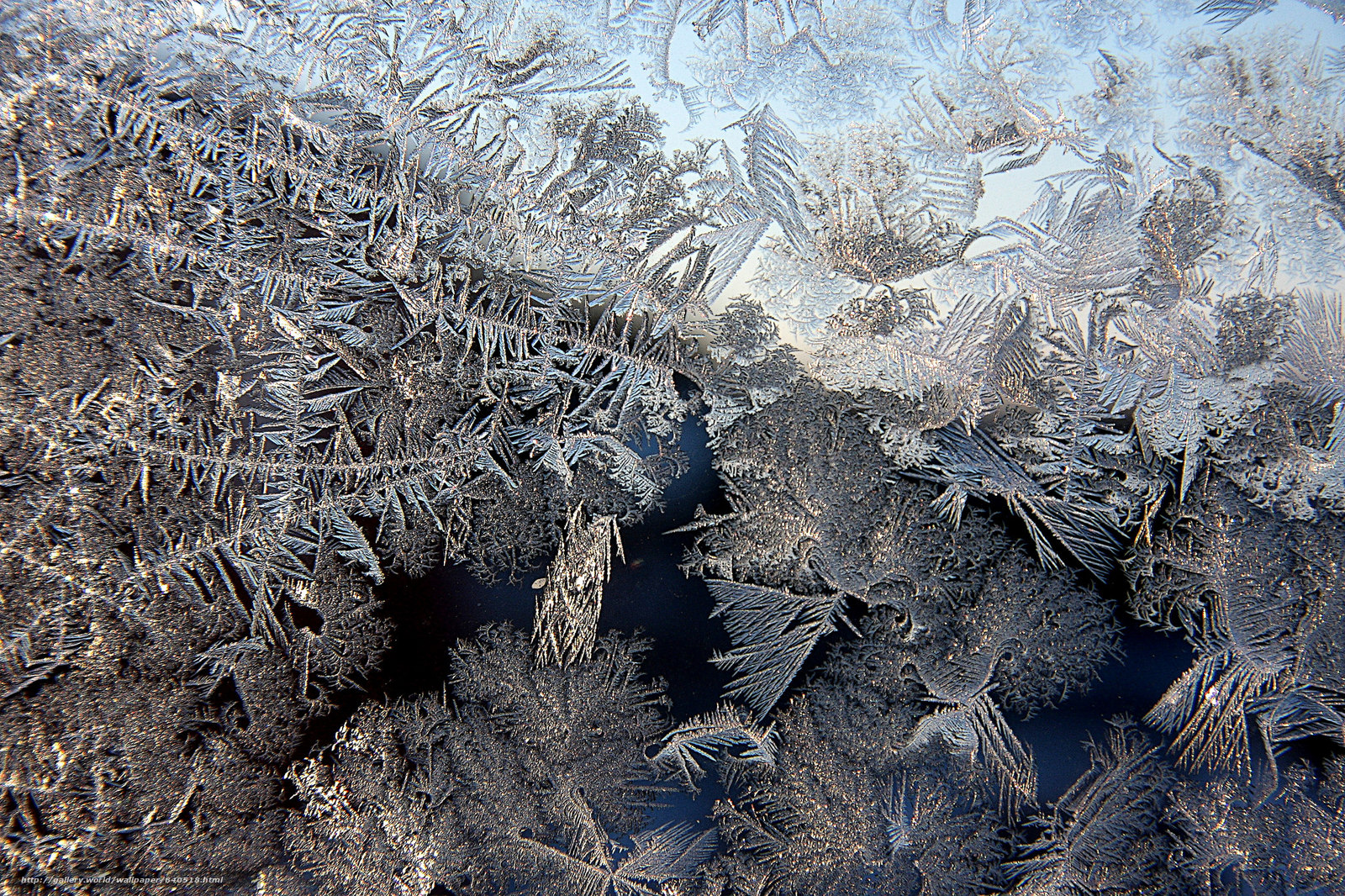 frost on glass wallpapers - photo #16