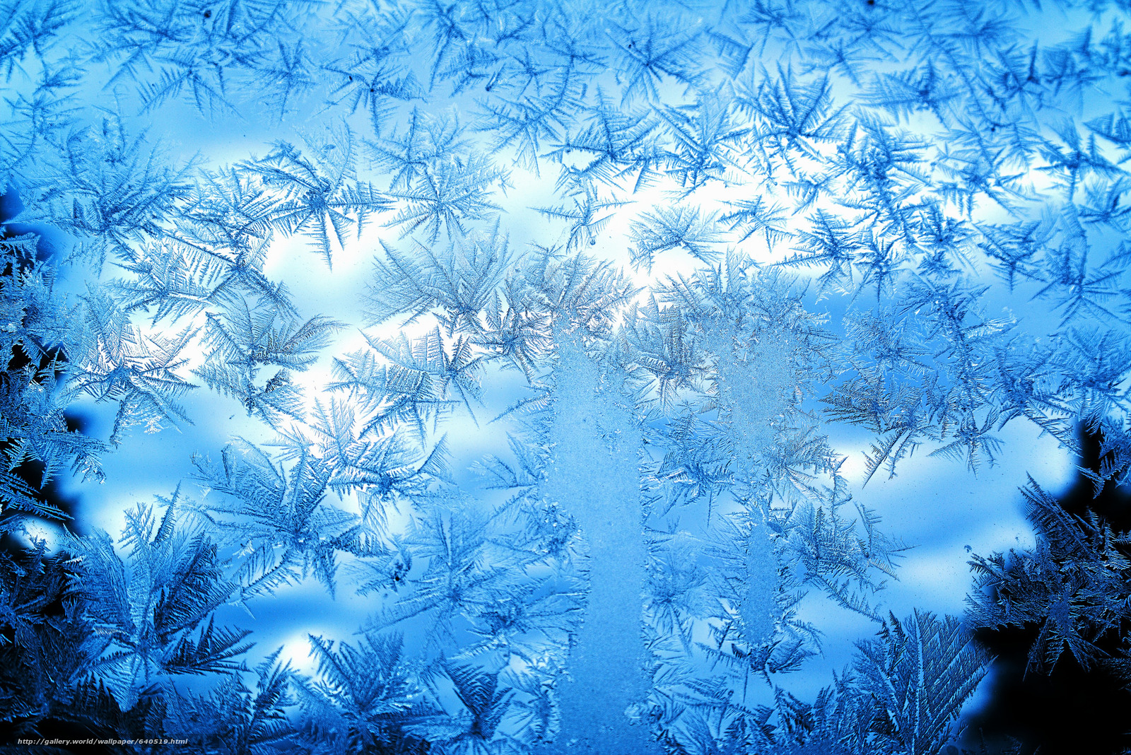 frost on glass wallpapers - photo #15