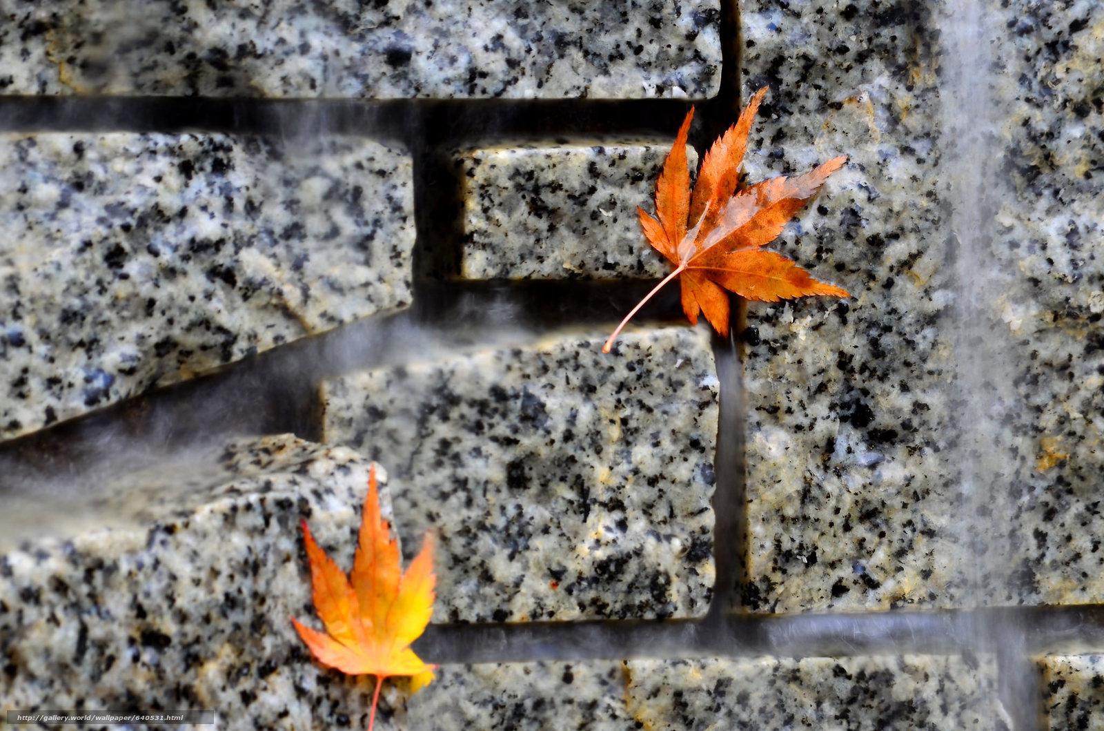 Tlcharger Fond d'ecran mur,  granit,  feuillage,  TEXTURE Fonds d'ecran gratuits pour votre rsolution du bureau 2048x1356 — image №640531