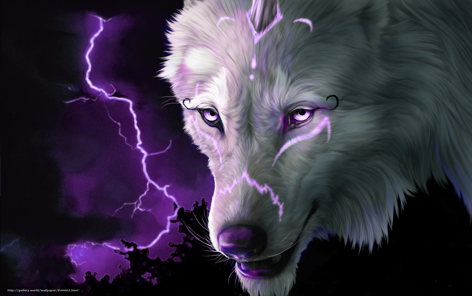 Download wallpaper wolf,  view,  lightning,  3d free desktop wallpaper in the resolution 2064x1297 — picture №640892