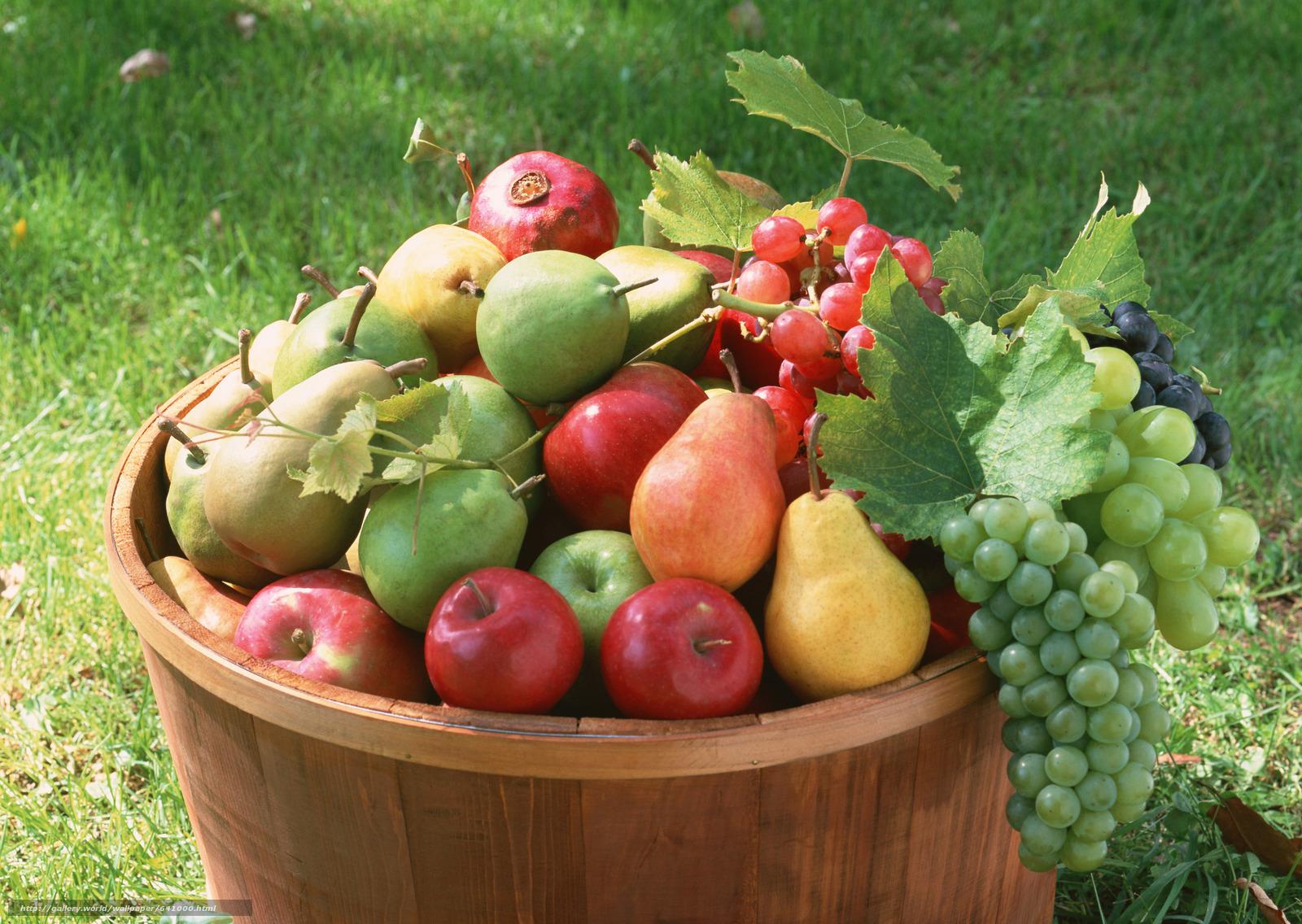 descarca imagini de fundal fruct,  fel de mâncare făcut,  floră,  plante Imagini de fundal gratuite pentru rezoluia desktop 2950x2094 — imagine №641000