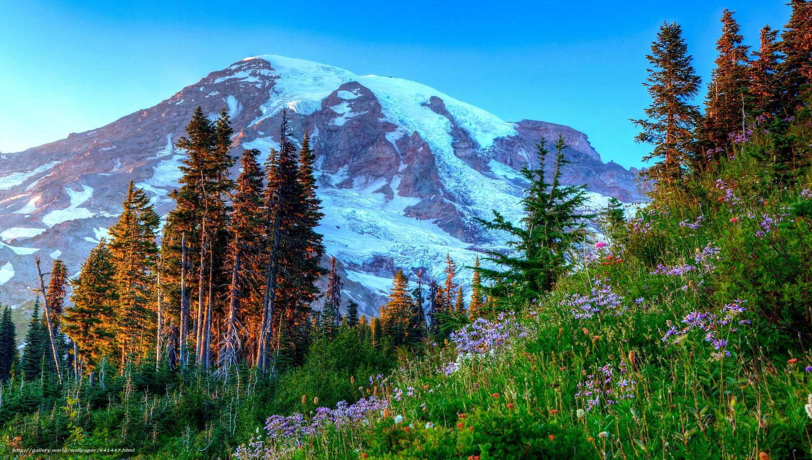scaricare gli sfondi Mount Rainier National Park,  Parchi Nazionali,  Washington,  Montagne Sfondi gratis per la risoluzione del desktop 2048x1160 — immagine №641447