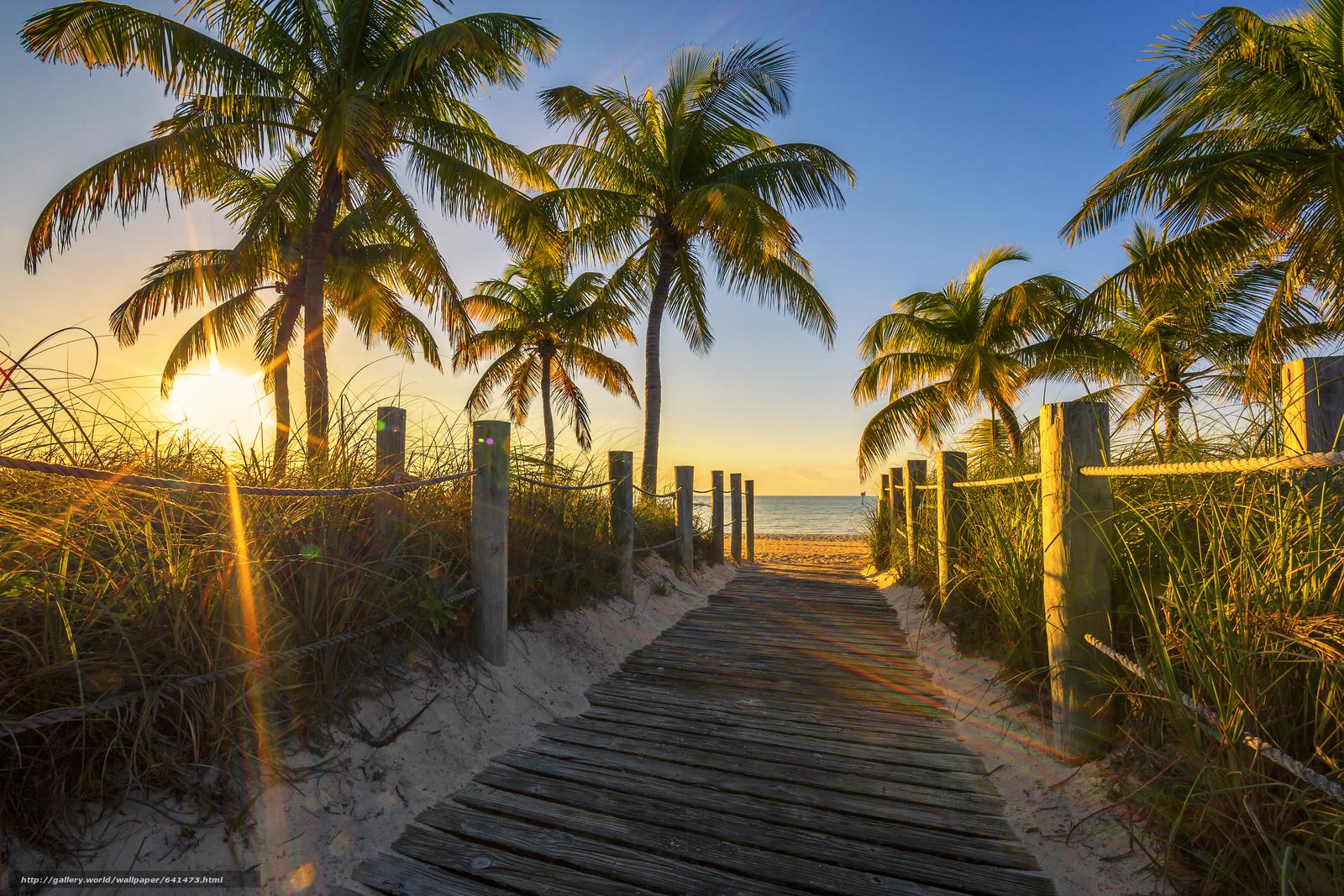 Baixar Wallpaper Florida,  mar,  praia,  pôr do sol Papis de parede grtis na resoluo 5364x3576 — quadro №641473