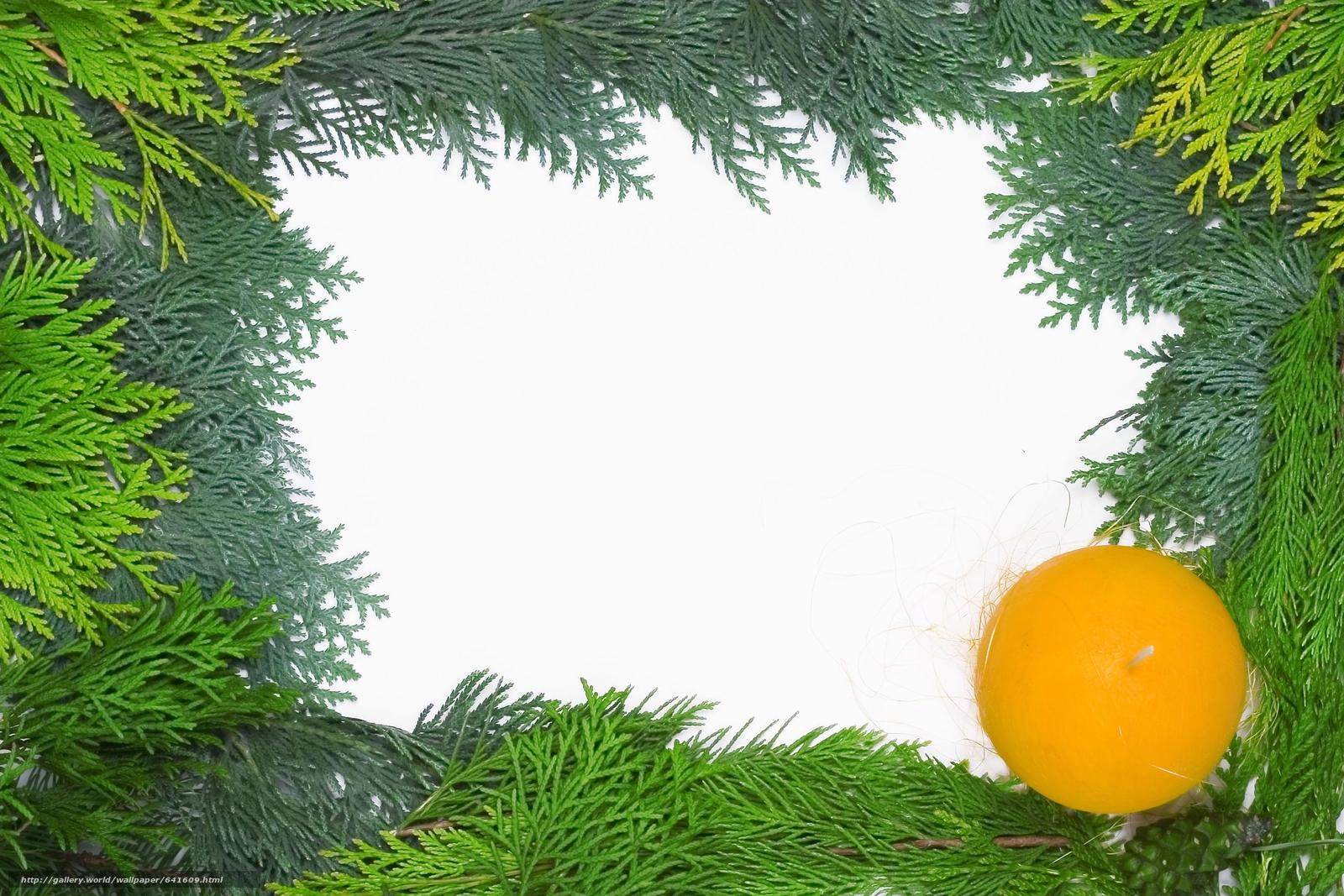 Скачать обои Новый год,  праздник,  хвоя,  шарик бесплатно для рабочего стола в разрешении 3072x2048 — картинка №641609