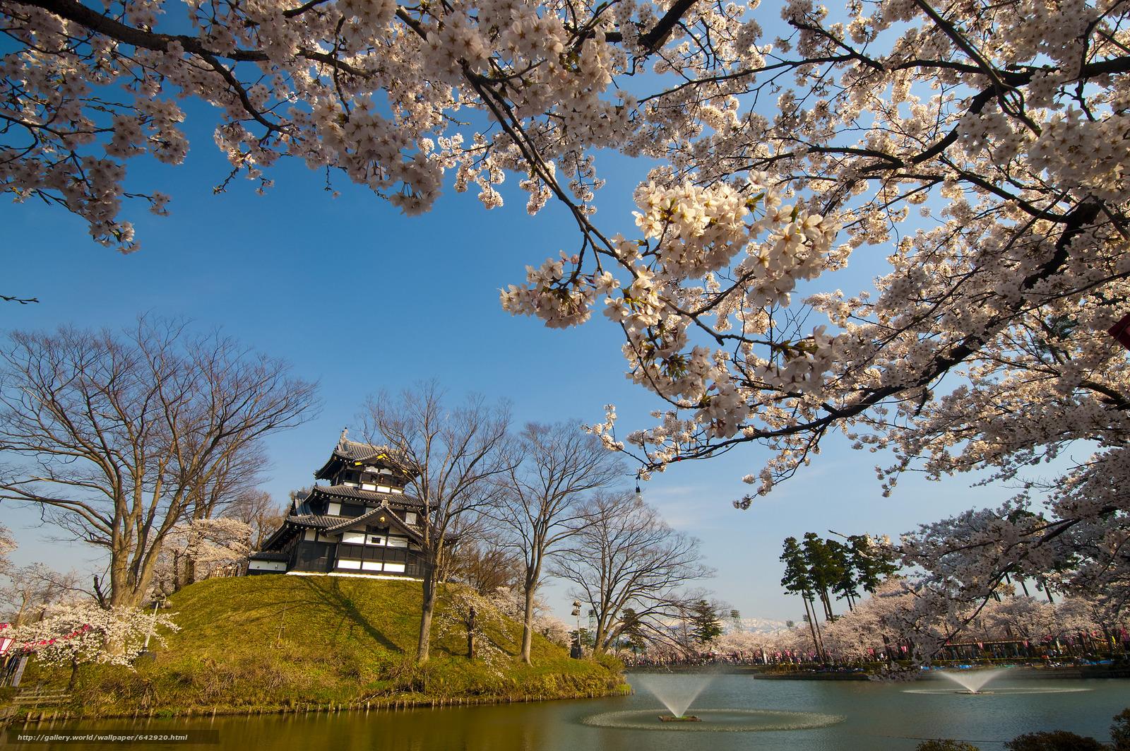 Скачать обои Япония,  Фудзияма,  замок,  парк бесплатно для рабочего стола в разрешении 2048x1360 — картинка №642920