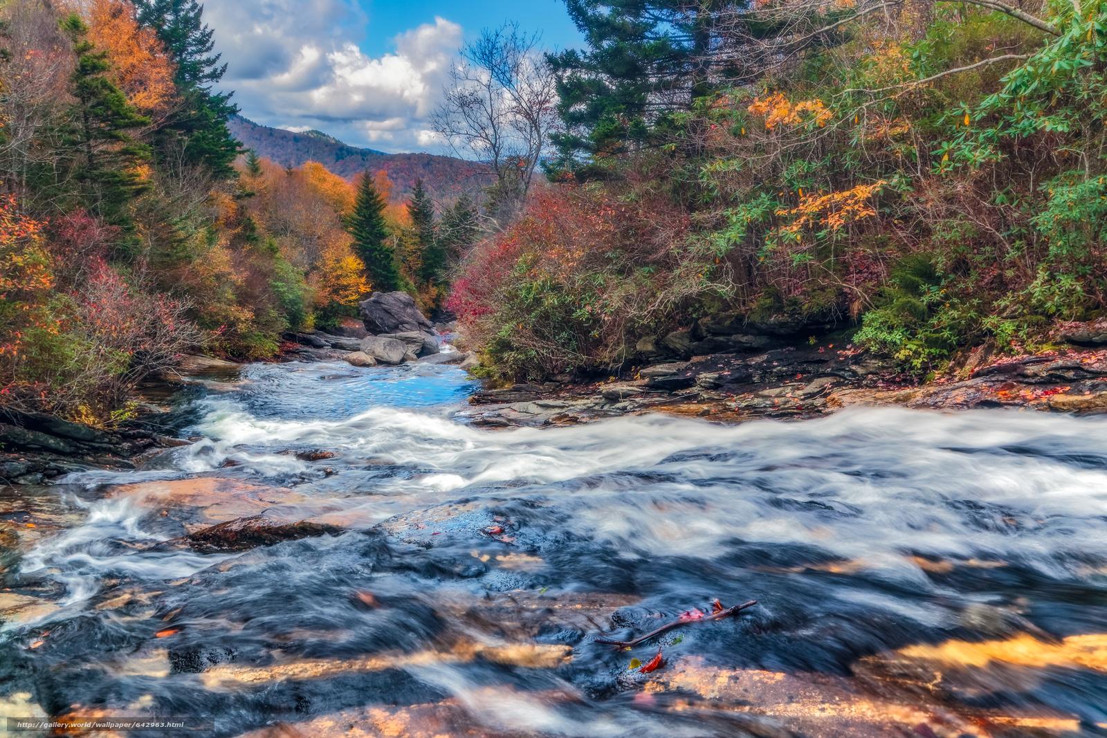 Скачать обои осень,  река,  лес,  деревья бесплатно для рабочего стола в разрешении 3072x2048 — картинка №642963