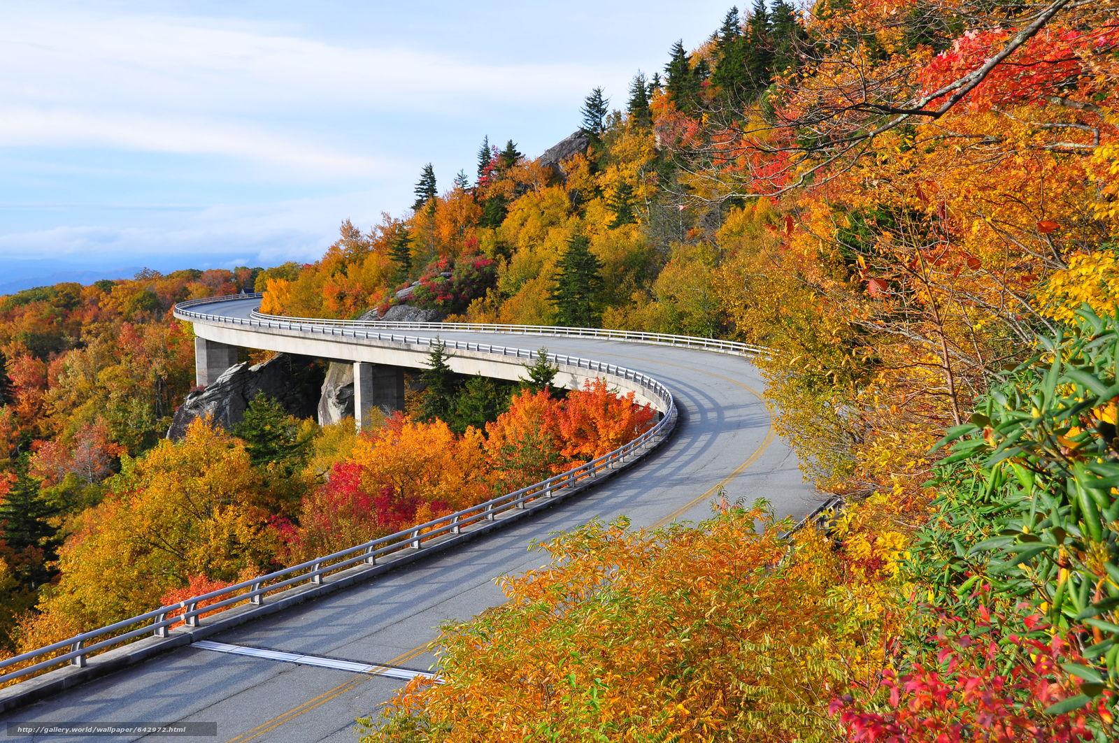 scaricare gli sfondi Highway Linn Cove,  Viadotto Cove Linn,  USA,  ponte Sfondi gratis per la risoluzione del desktop 4288x2848 — immagine №642972