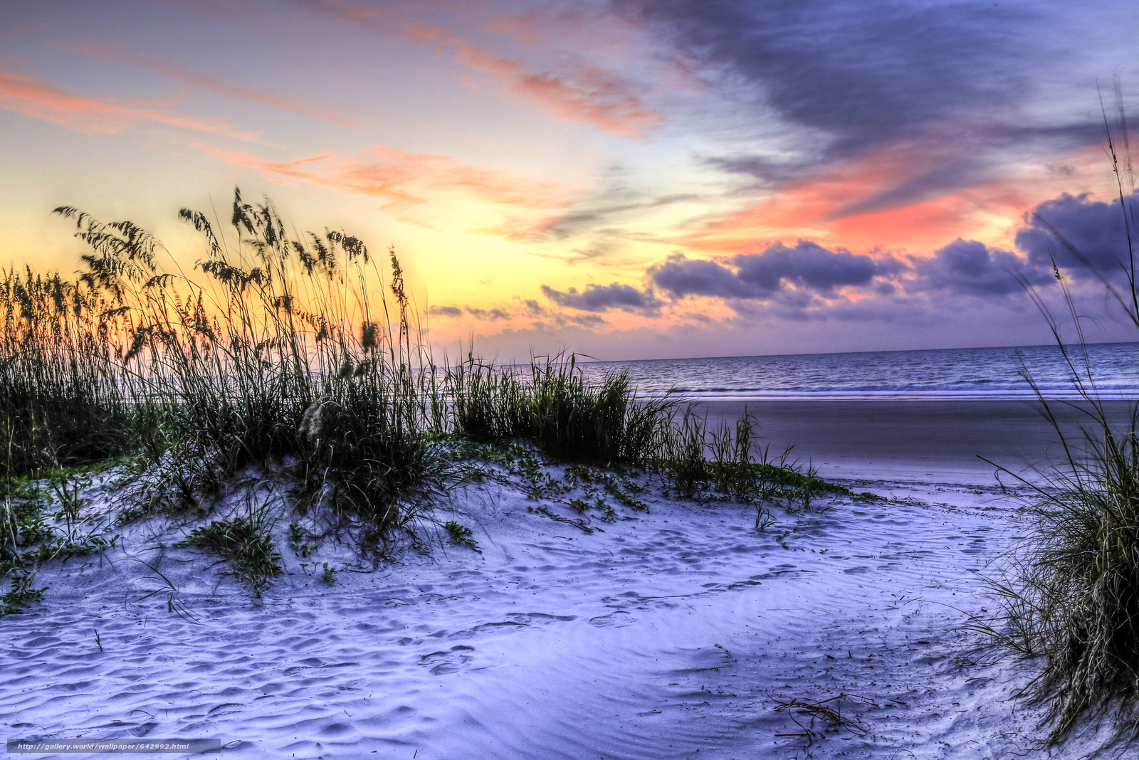 South Carolina Beaches Winter