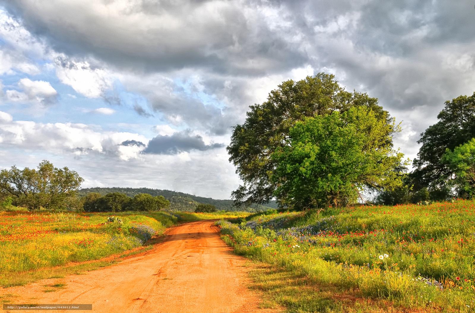 Скачать обои дорога,  поле,  деревья,  цветы бесплатно для рабочего стола в разрешении 2048x1352 — картинка №643011
